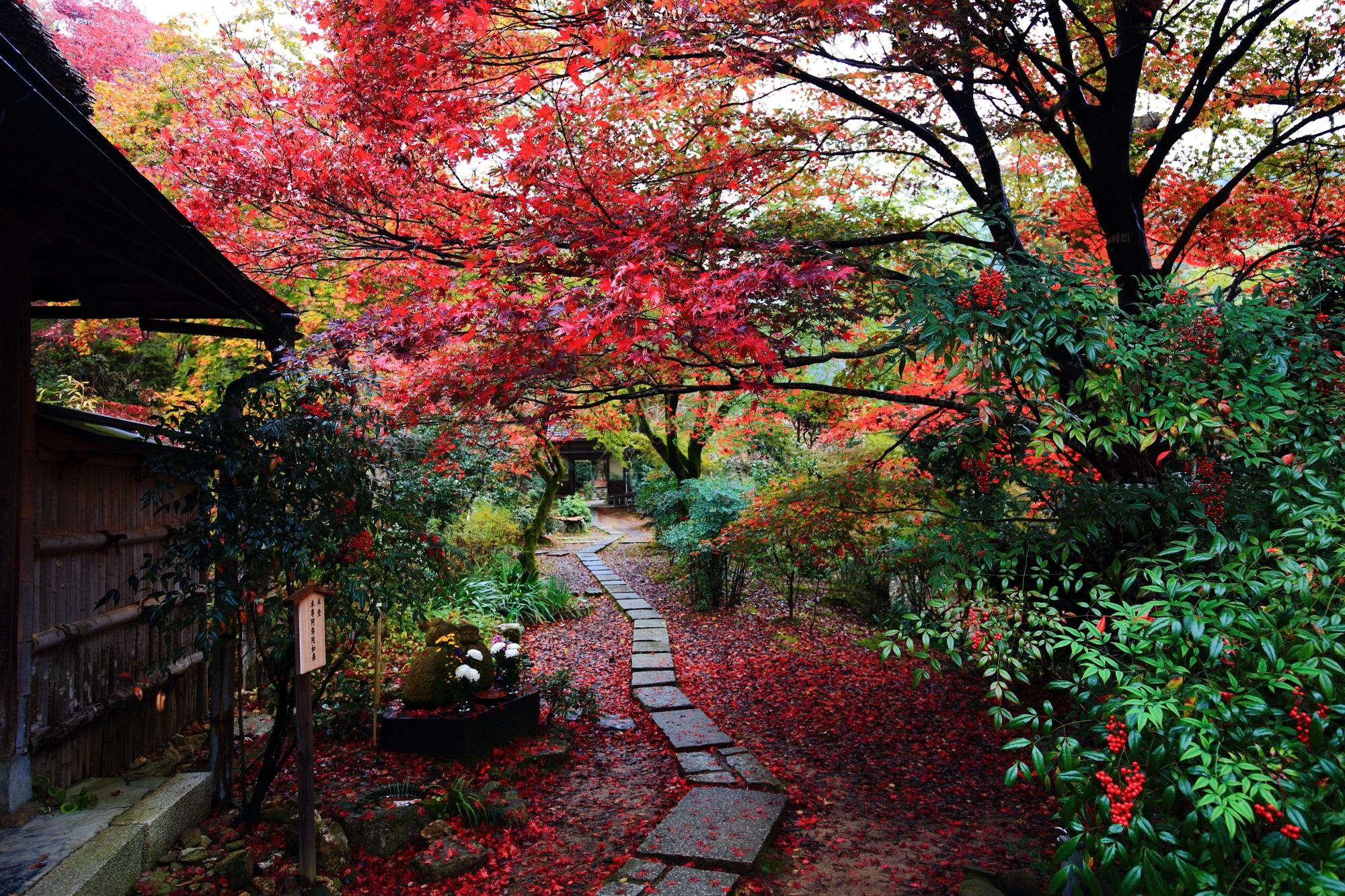 見事な赤い紅葉と散りもみじに染まった直指庵