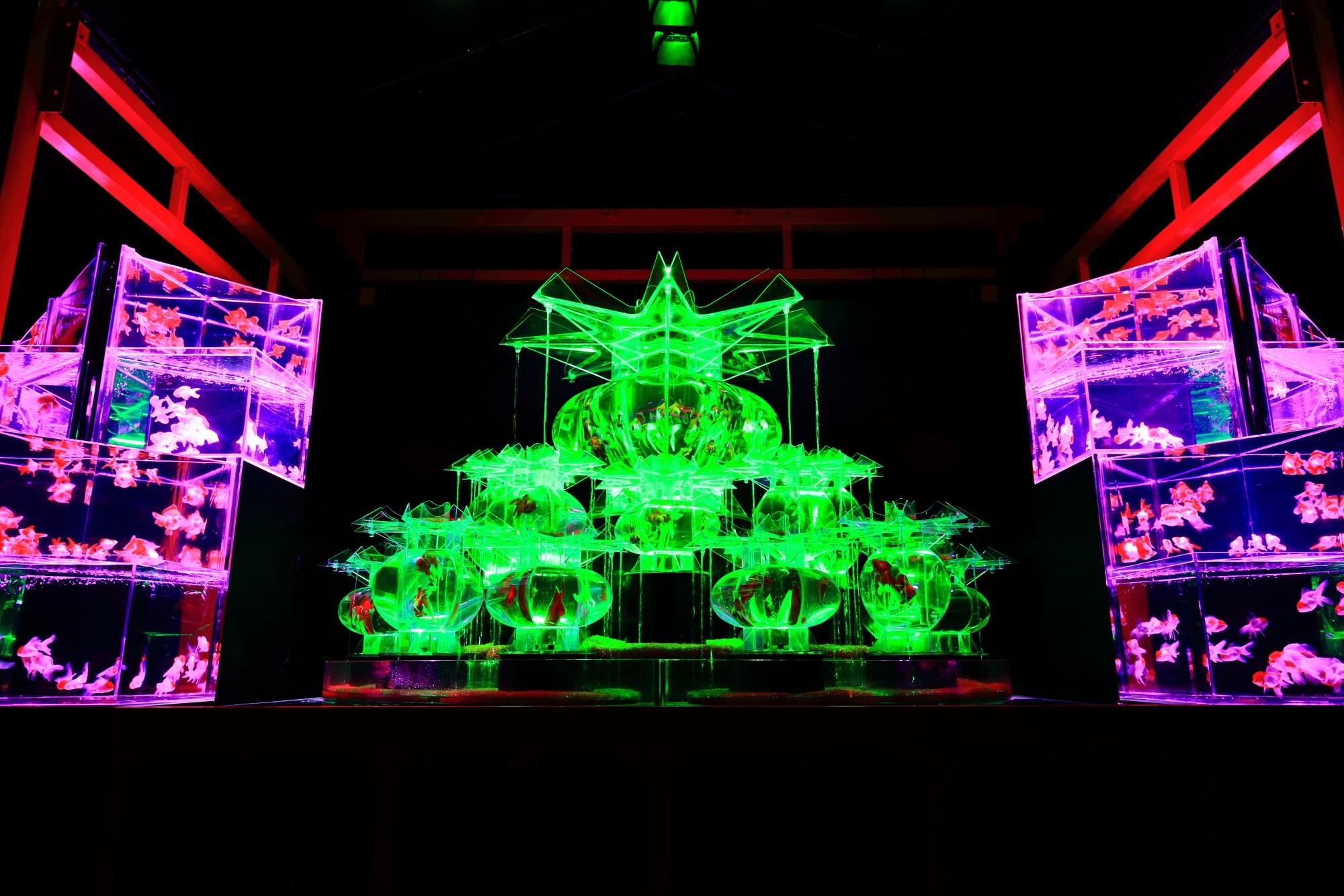 金魚の舞のアートアクアリウム城の大奥