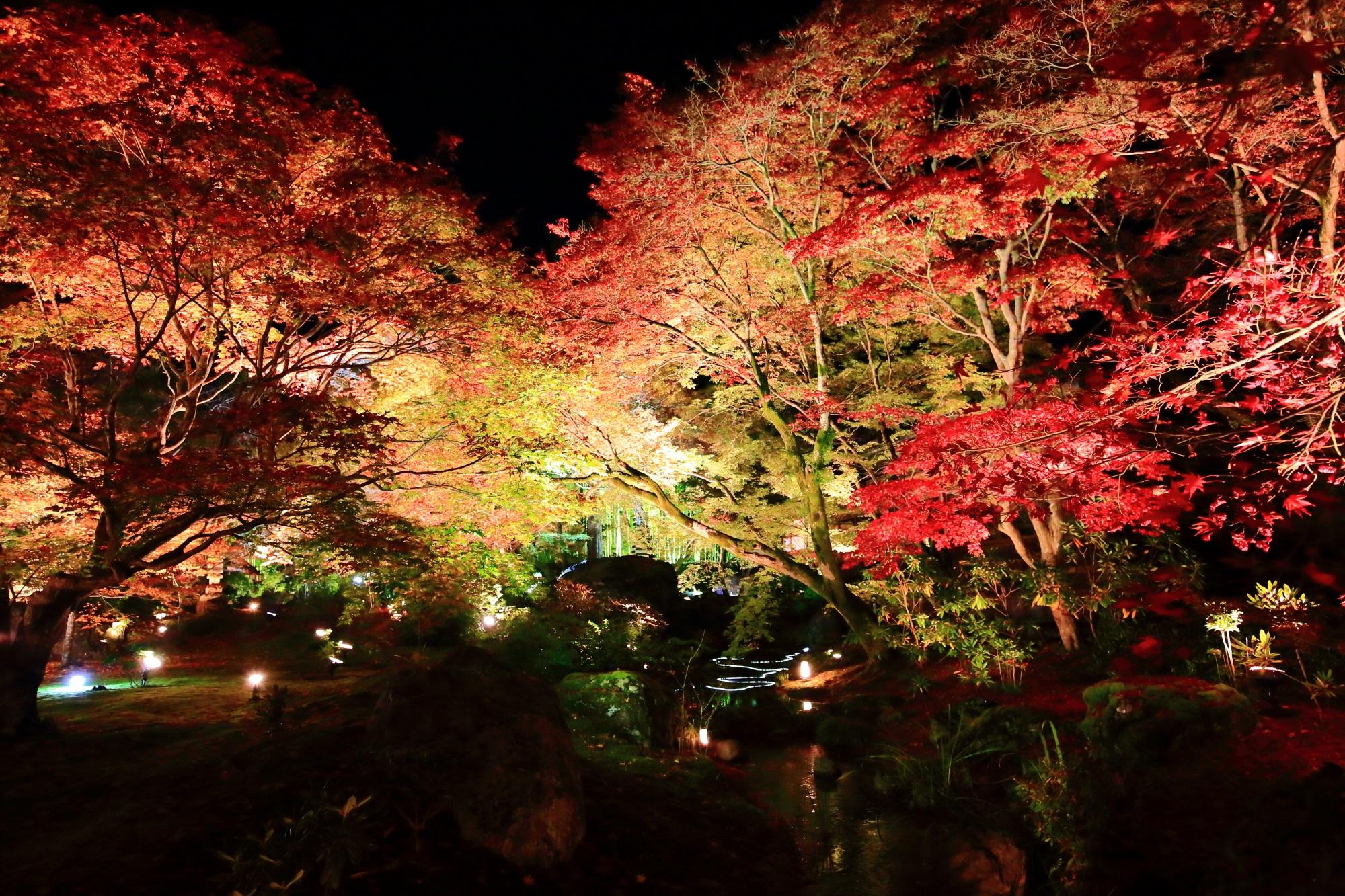 嵐山の宝厳院の獅子吼の庭の見ごろの紅葉ライトアップ 2015年11月