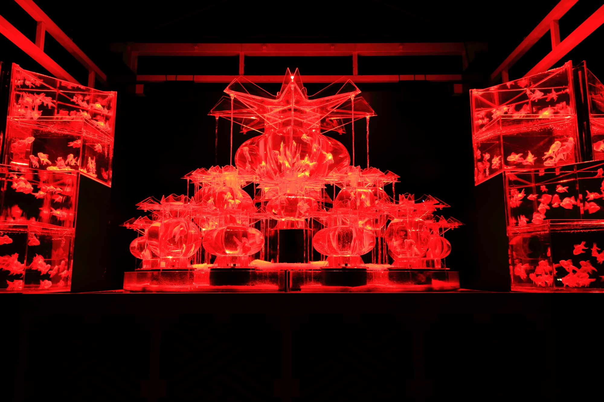 大奥 幻想的 金魚の舞 アートアクアリウム城 二条城