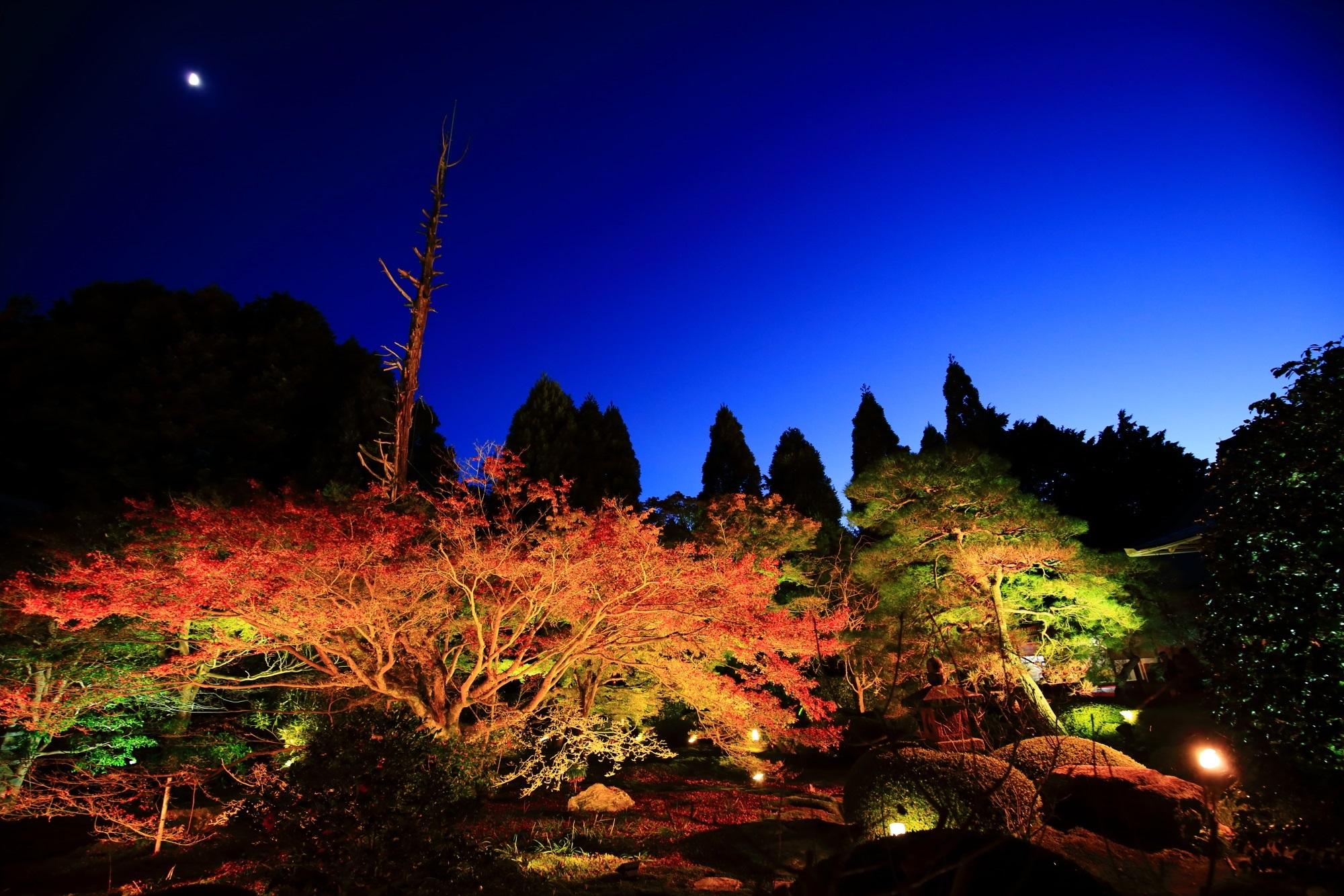 涌寺別院の雲龍院の風情ある紅葉ライトアップと空