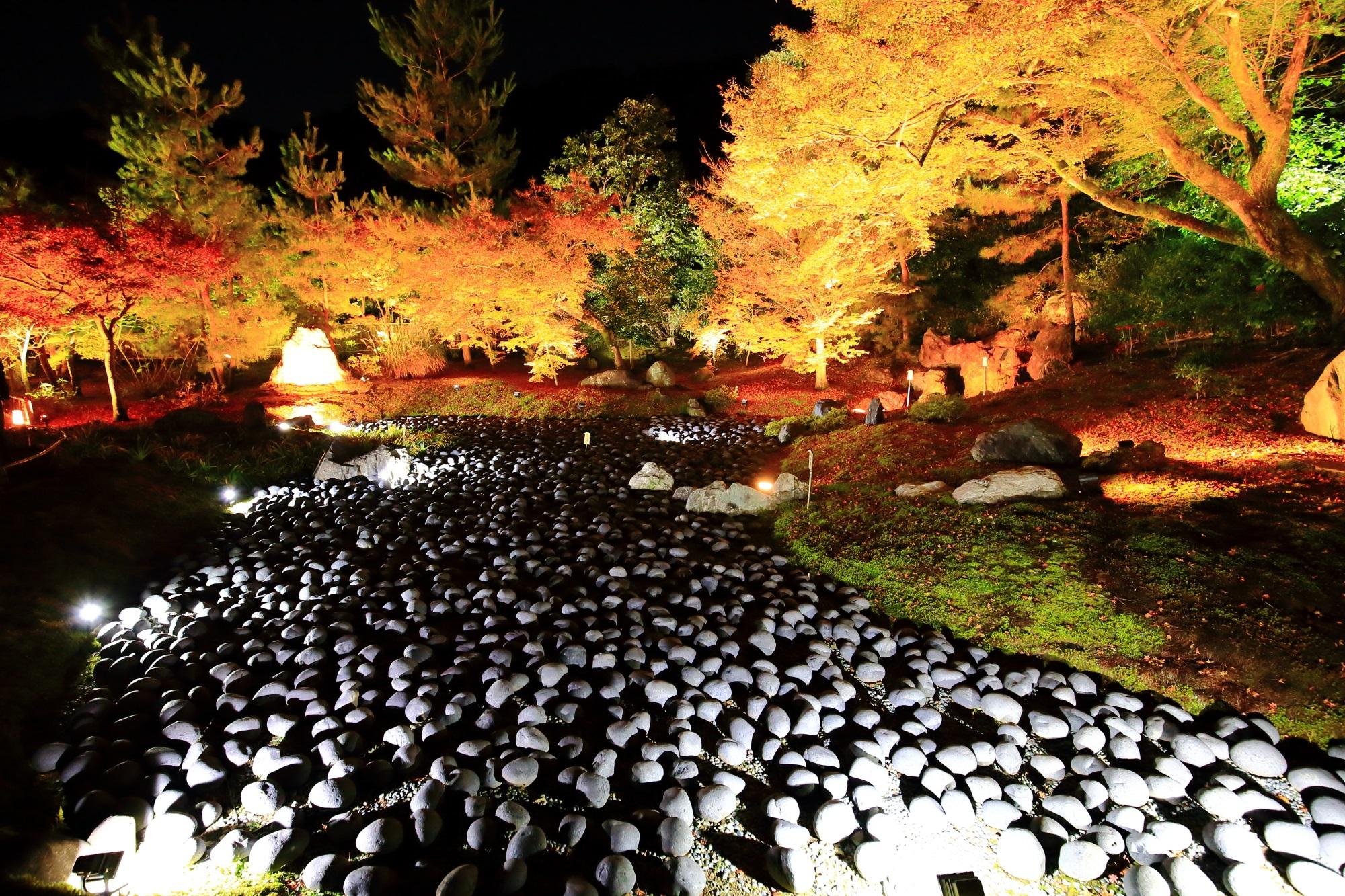 天龍寺 宝厳院の苦海の幻想的な紅葉ライトアップ