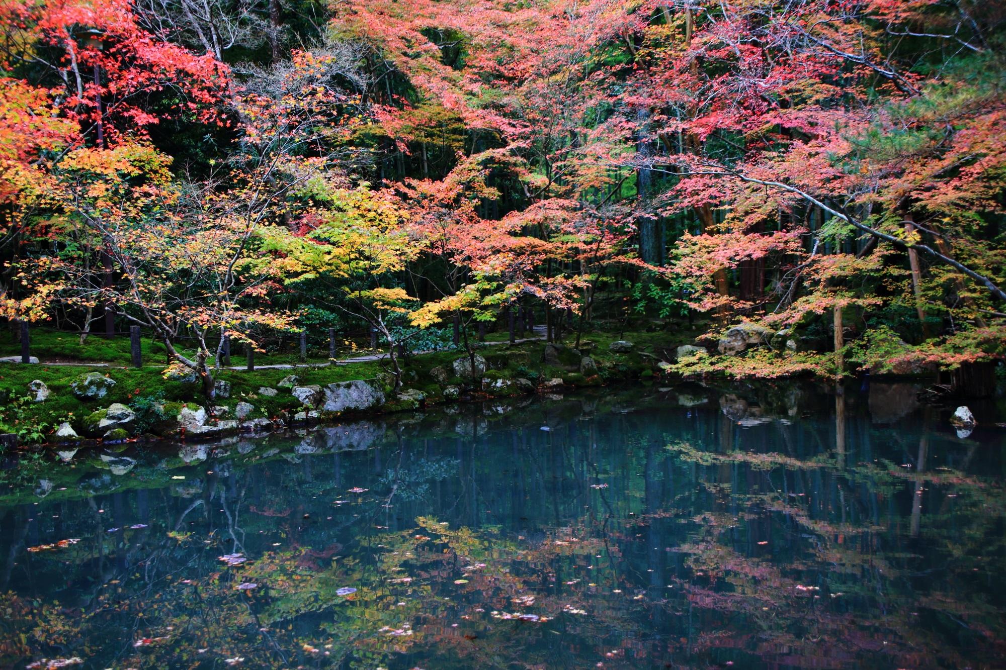 天授庵のこの年特有のグラデーション紅葉と秋の情景