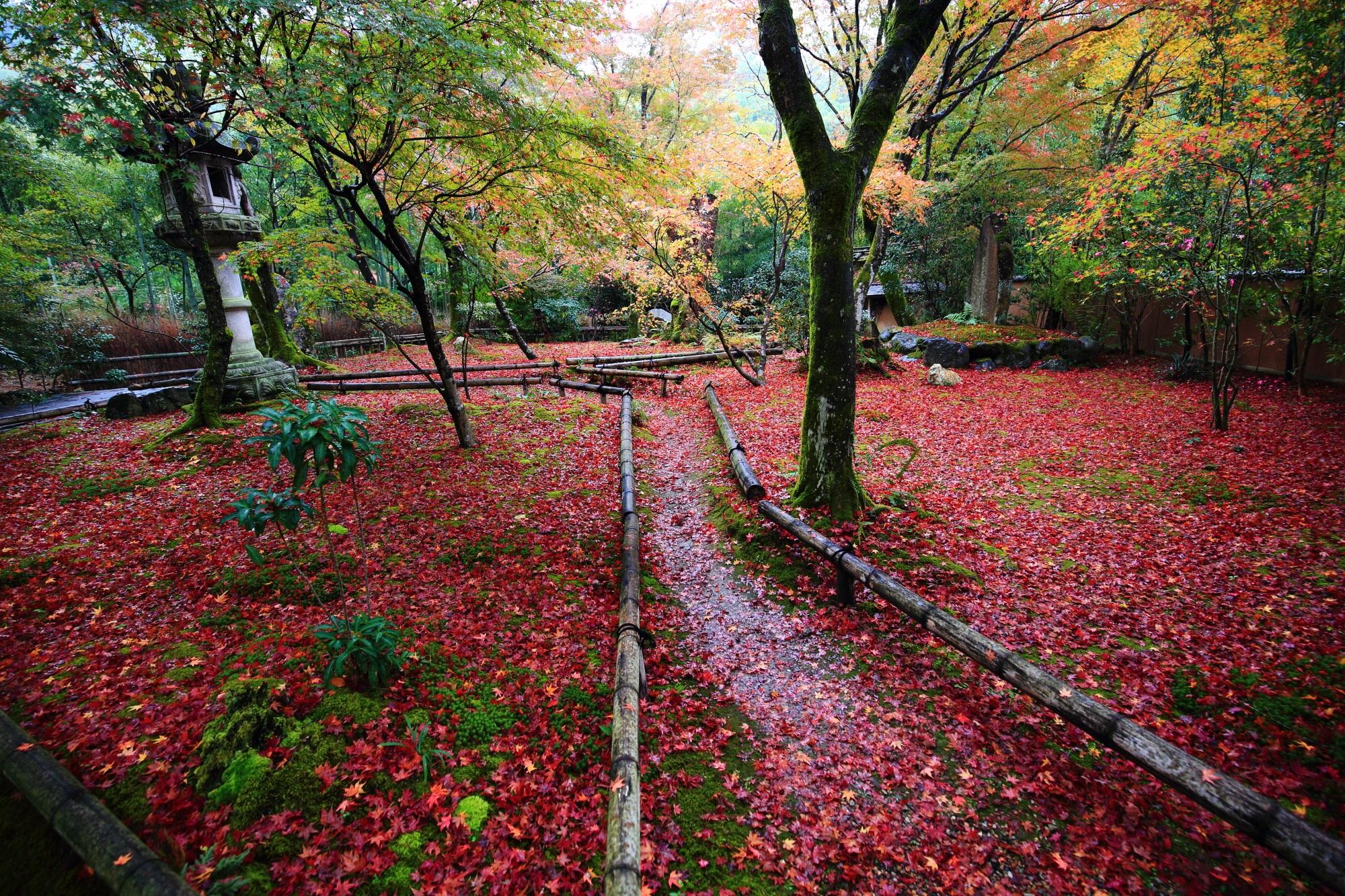 紅葉の隠れた名所の北嵯峨直指庵の美しい散りもみじ