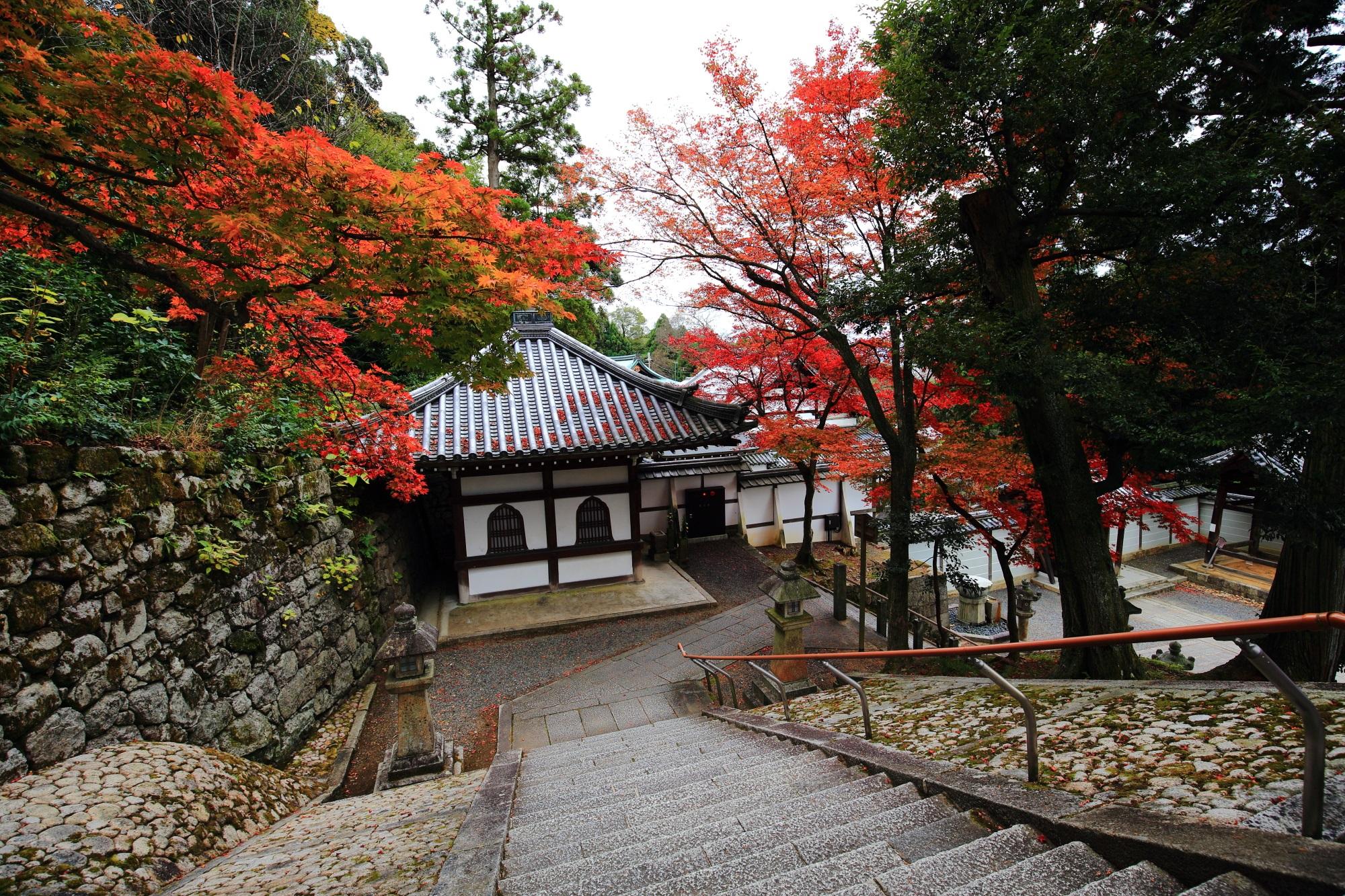 上から眺めた違った雰囲気の知恩院御廟の紅葉