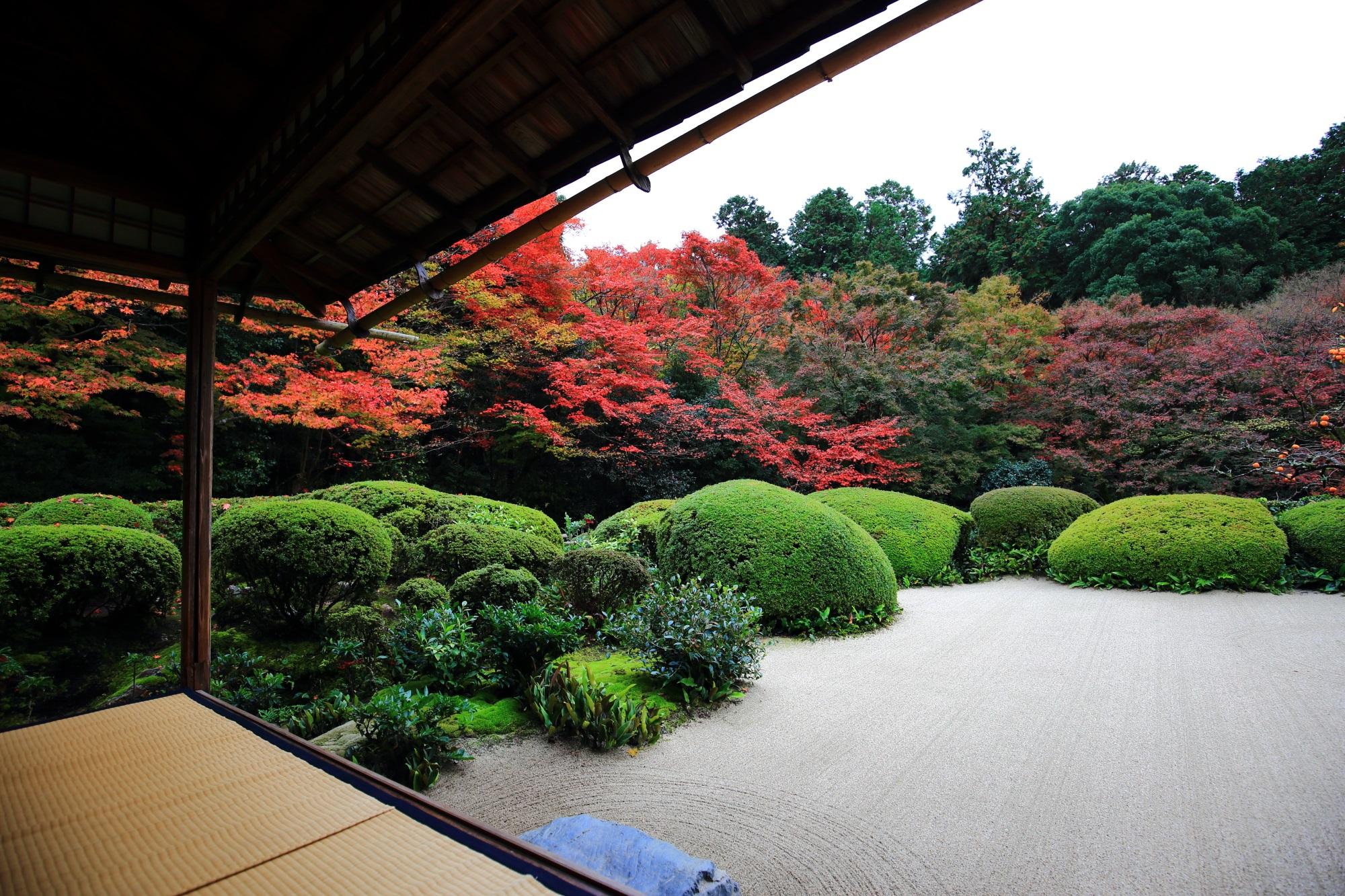 詩仙堂の色とりどりの紅葉