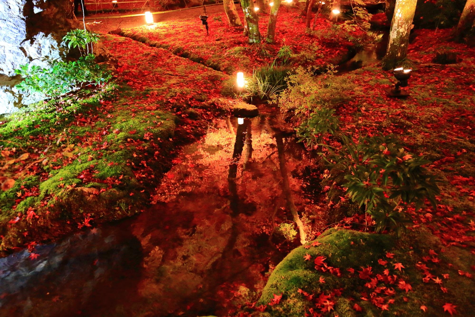宝厳院の獅子岩付近の小川の紅葉と水鏡と散りもみじのライトアップ