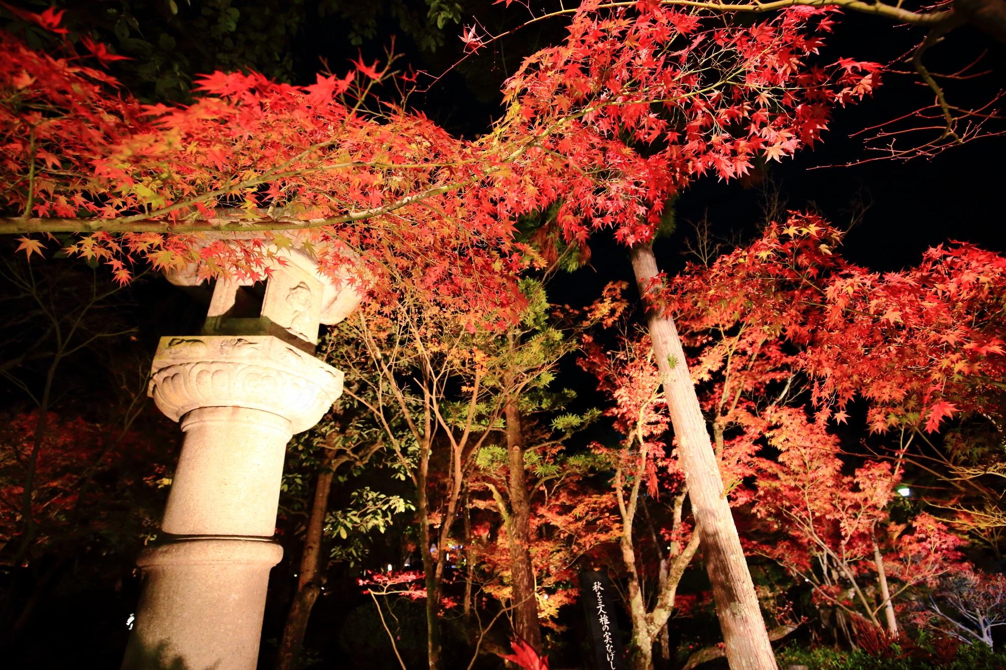 永観堂の参道の灯籠と赤いもみじ