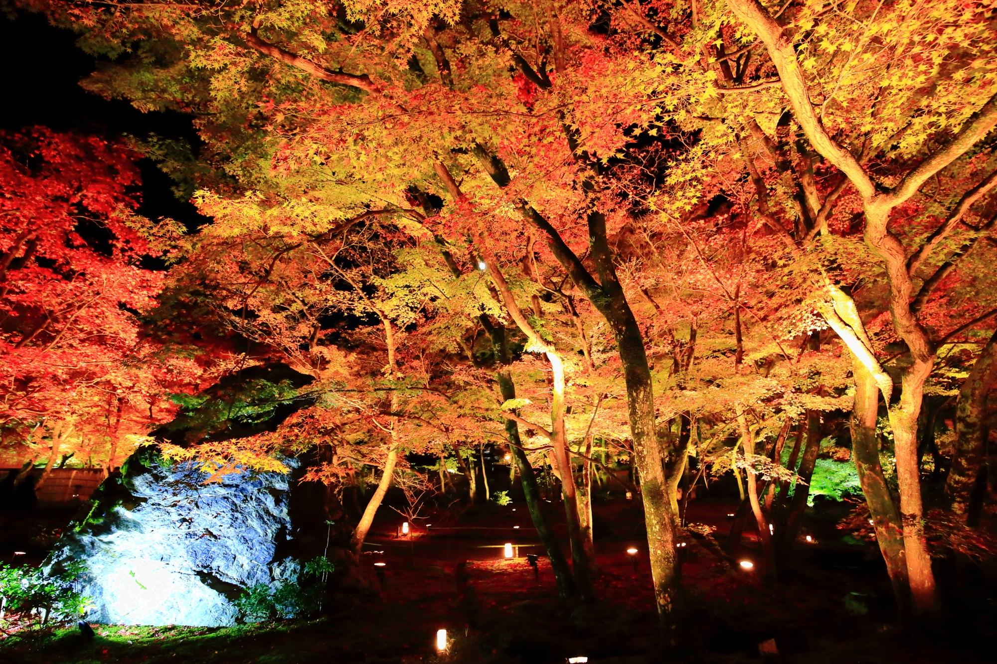 獅子岩 紅葉 見ごろ ライトアップ 宝厳院 獅子吼の庭