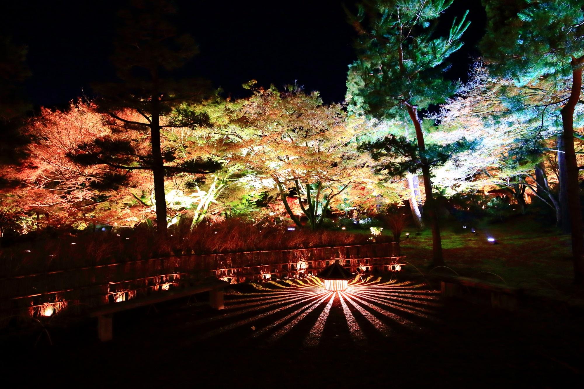 もみじの名所の天龍寺塔頭宝厳院の獅子吼の庭の紅葉ライトアップ