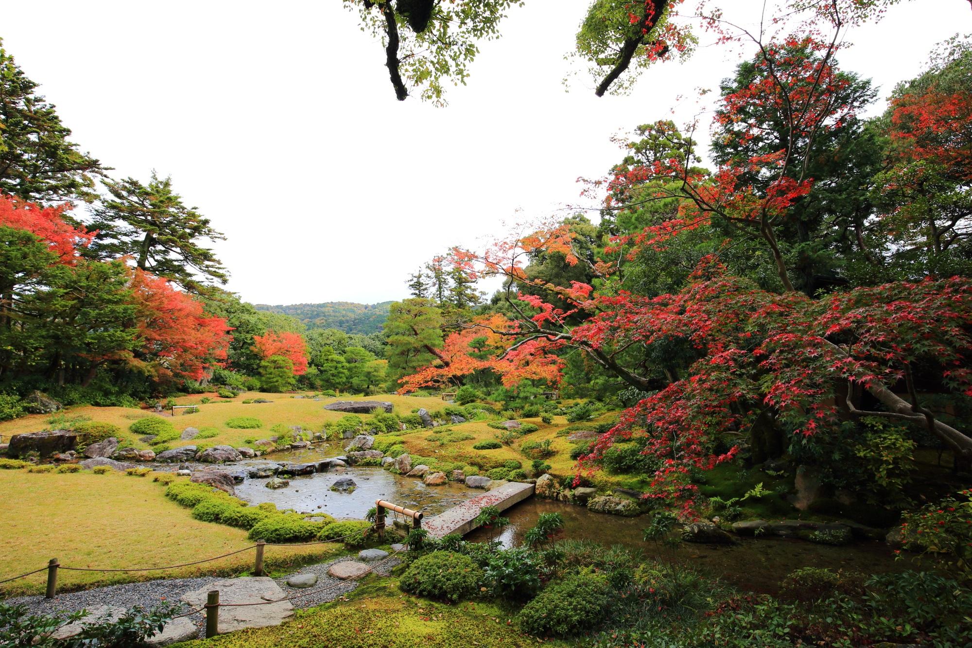 無鄰菴の池泉回遊式庭園の紅葉