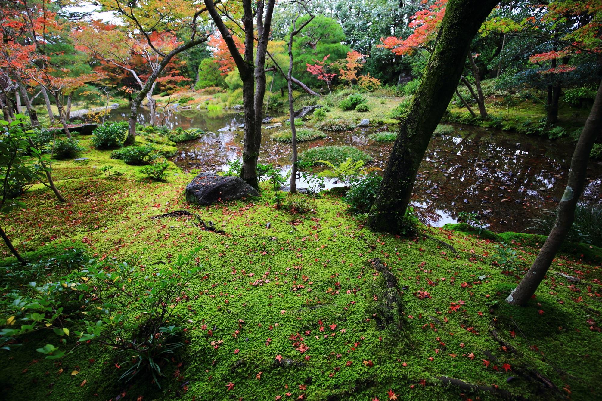 人があまりいない美しい庭園が広がる無鄰菴