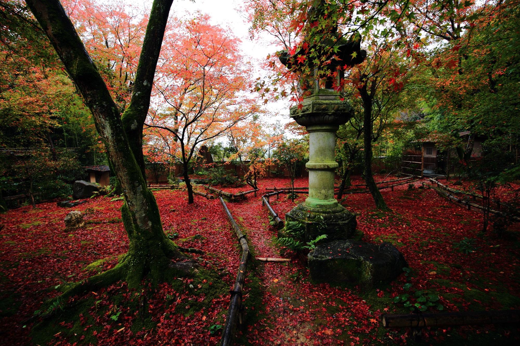 直指庵の苔庭と灯籠と紅葉
