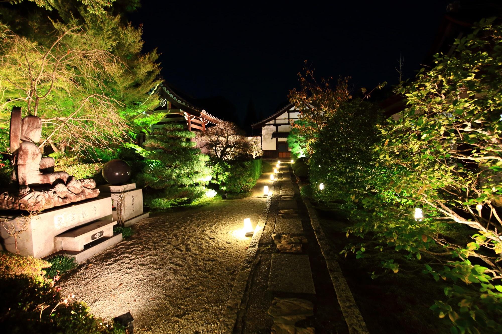 泉涌寺別院の雲龍院の参道のライトアップ