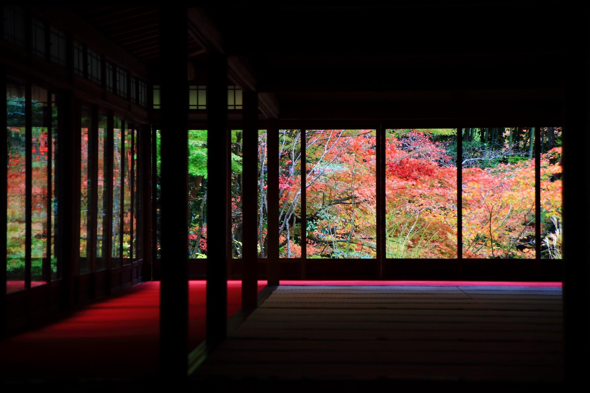 天授庵の池泉回遊式の書院南庭の紅葉