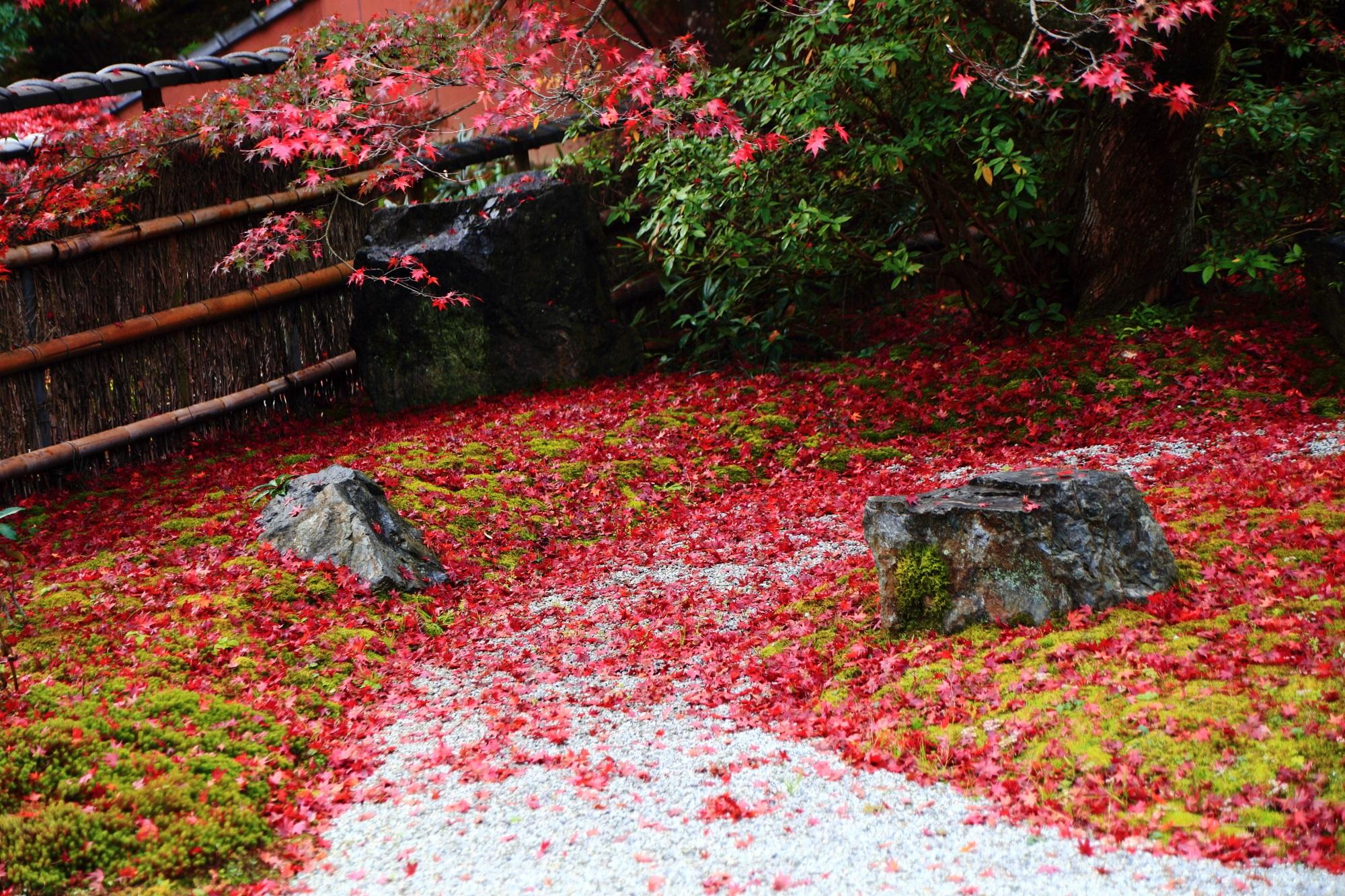 直指庵 阿弥陀堂 庭園 白砂 苔 散り紅葉