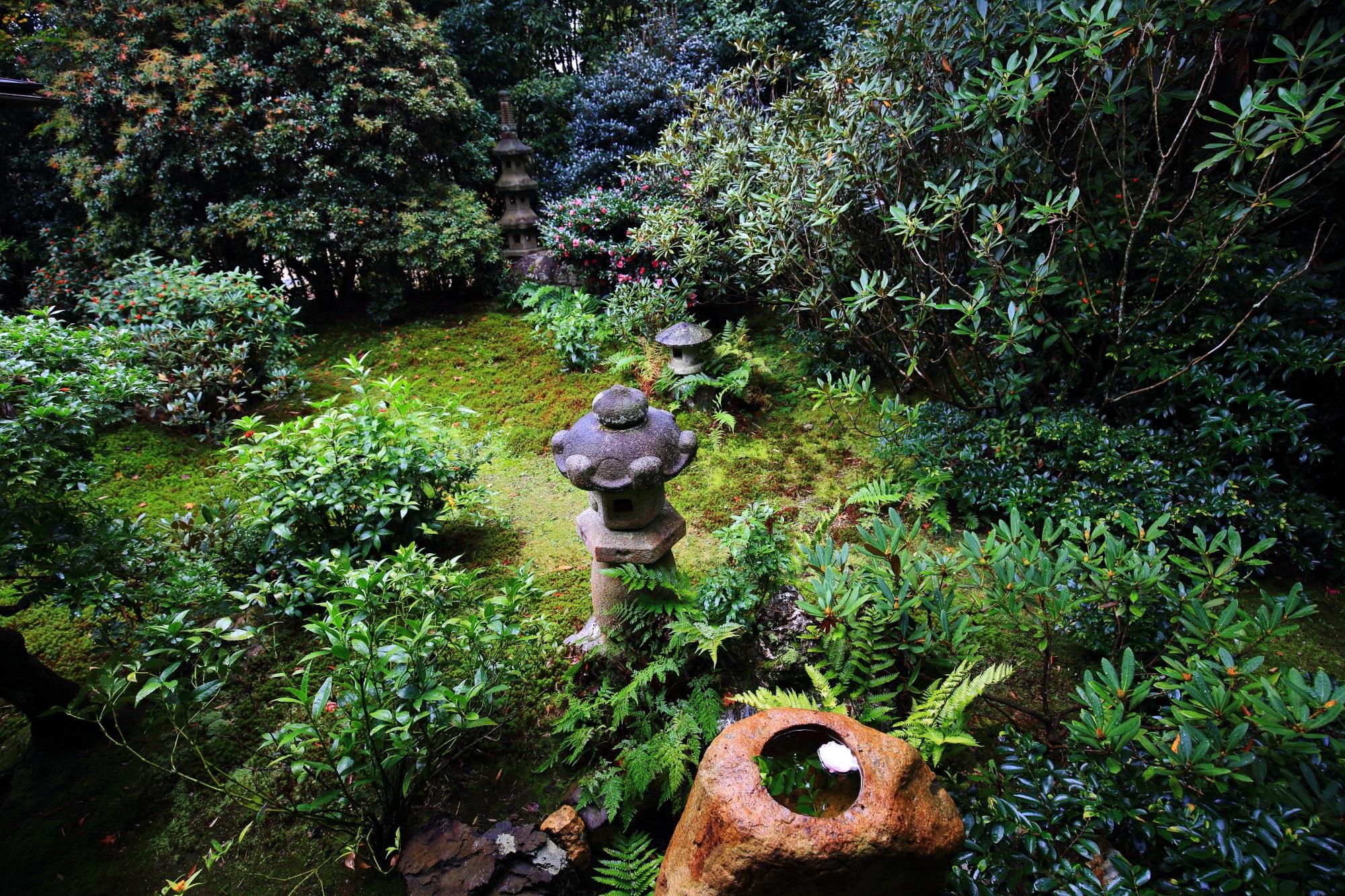 美しい緑につつまれたじきしあんの本堂中庭