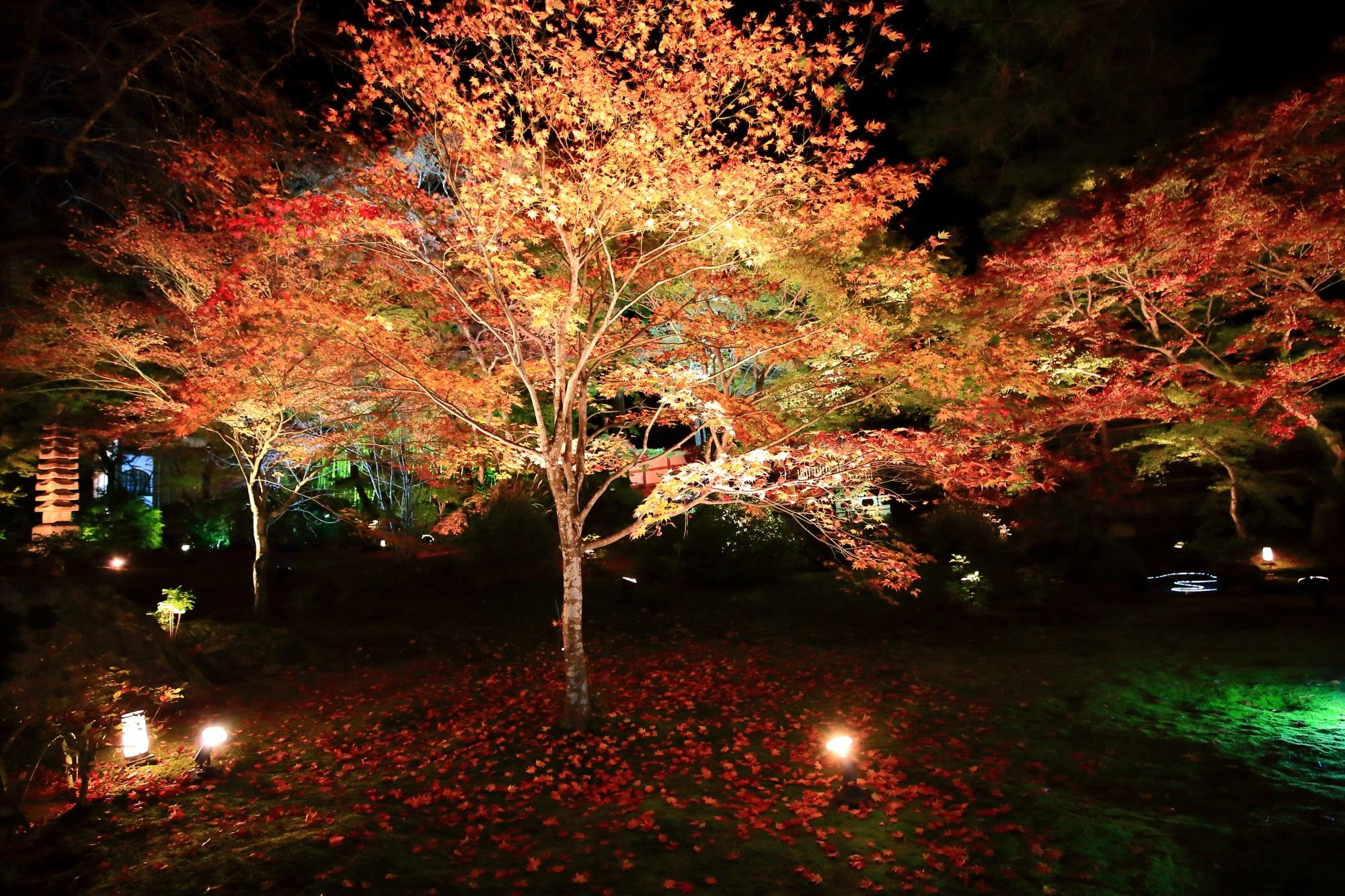 天龍寺 宝厳院の獅子吼の庭の紅葉と苔と散りもみじ