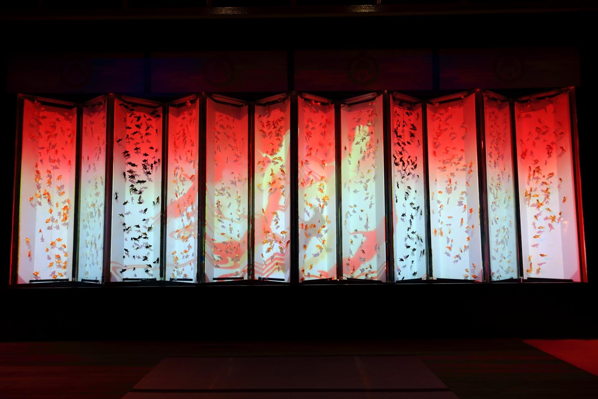 ビョウブリウム 金魚 幻想的 アートアクアリウム城 二条城