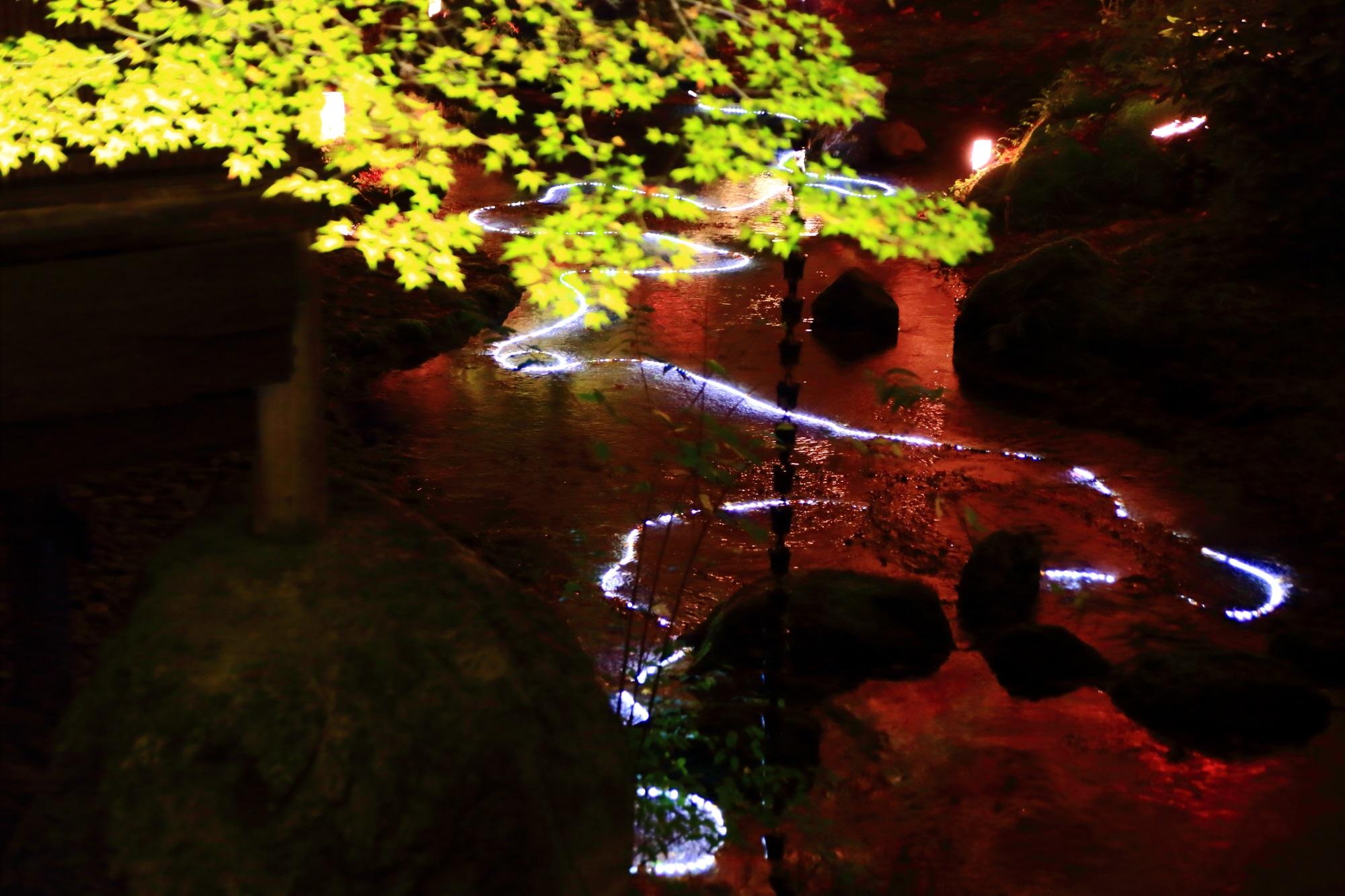 宝厳院の書院前の小川の光の演出と紅葉の水鏡