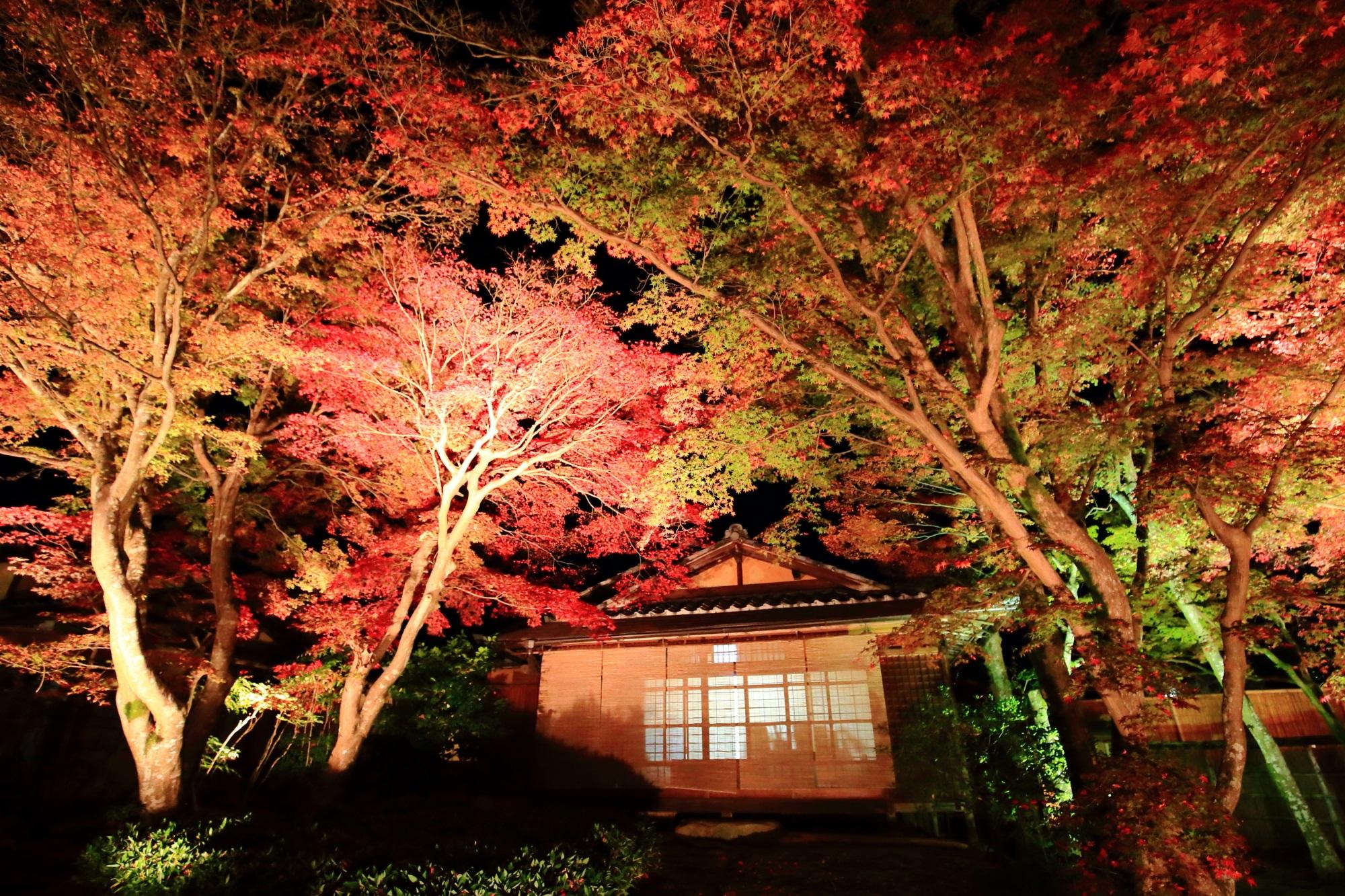 美しい紅葉につつまれた嵐山の宝厳院の獅子吼の庭