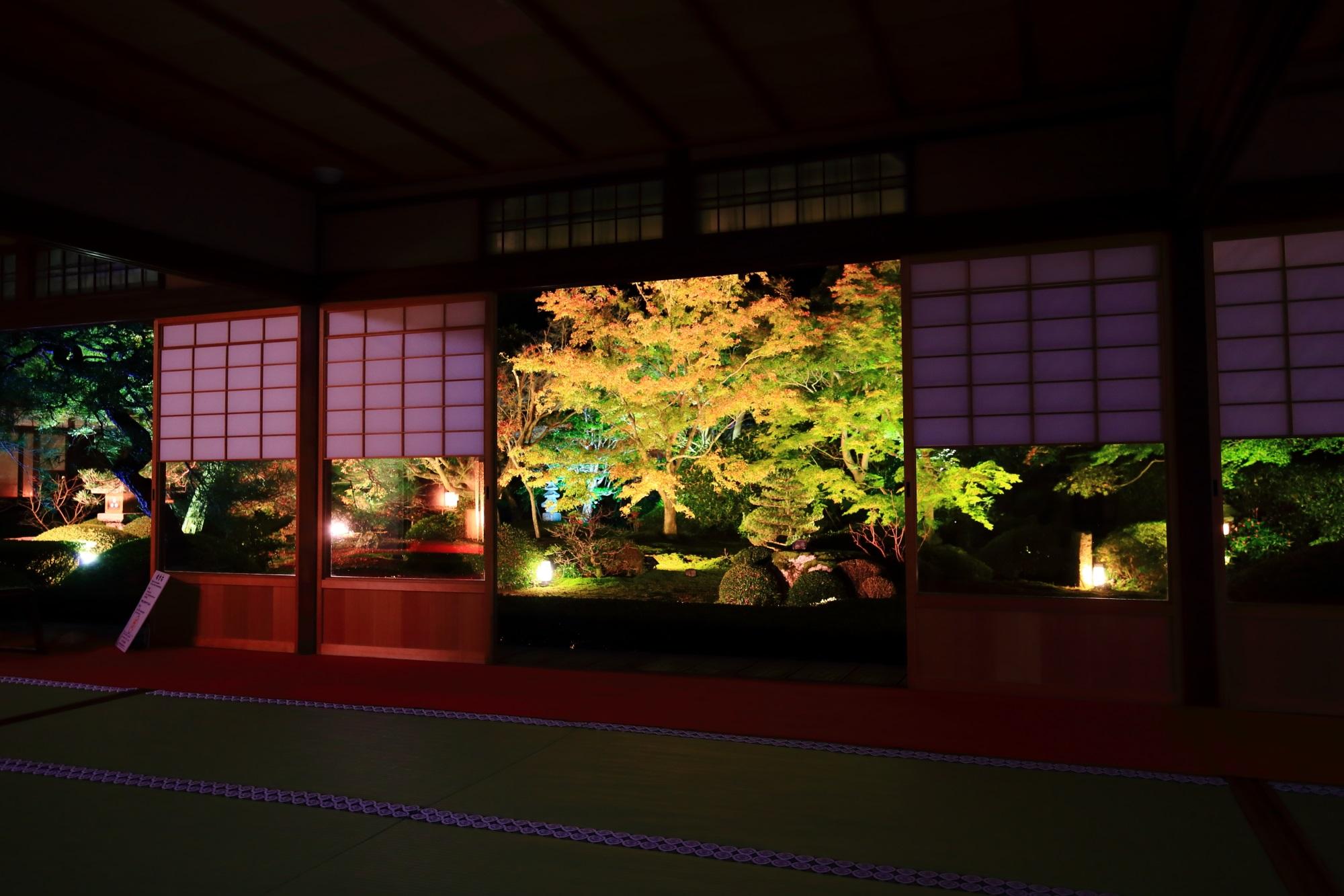 泉涌寺別院の雲龍院の茶室から眺めた紅葉ライトアップ