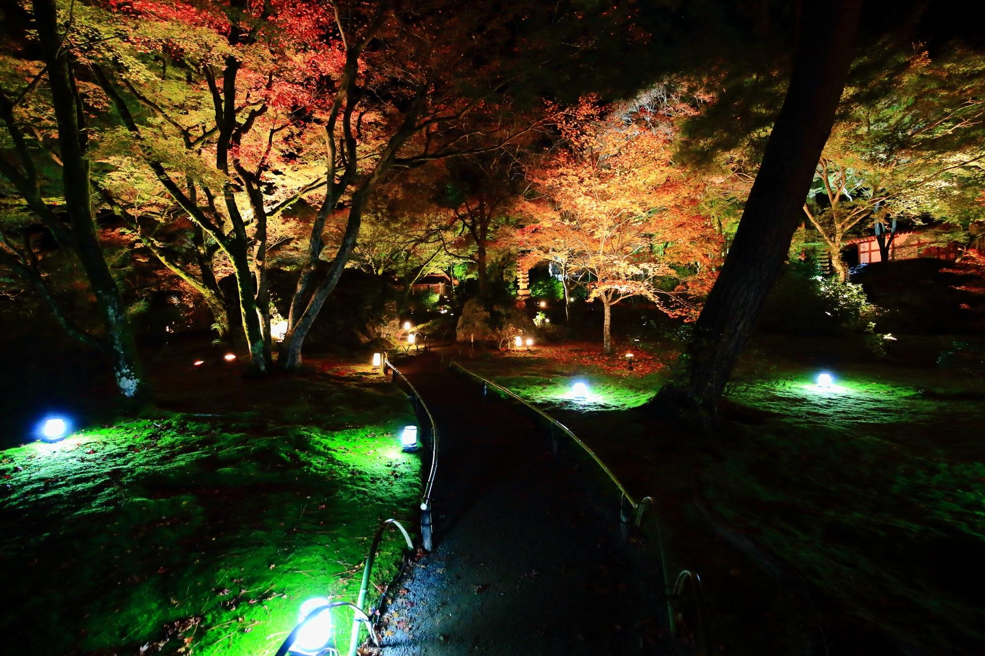 宝厳院 獅子吼の庭 碧岩 苔 紅葉 見ごろ ライトアップ