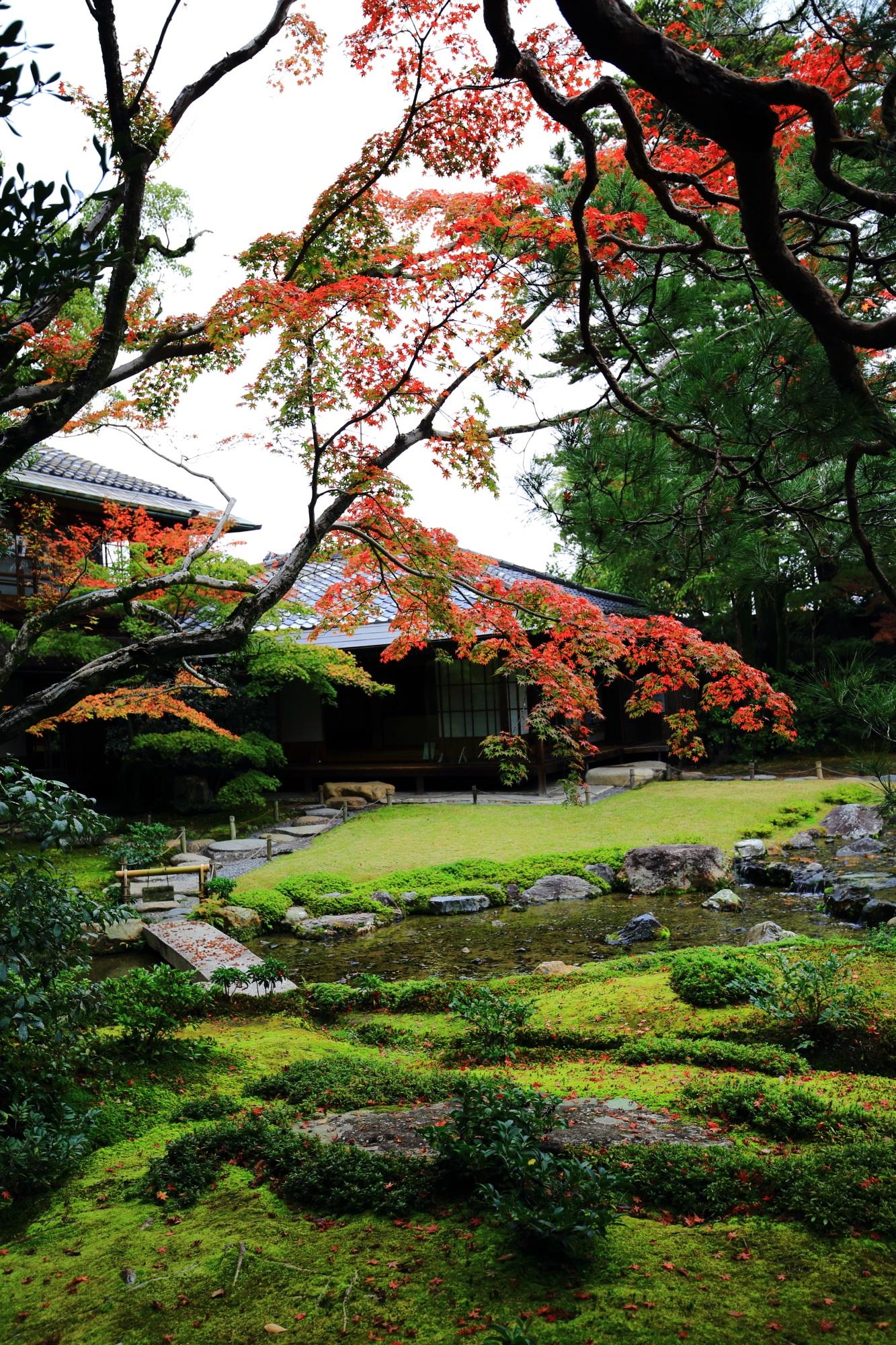 無鄰菴の頑張ってくれた紅葉と秋の情景