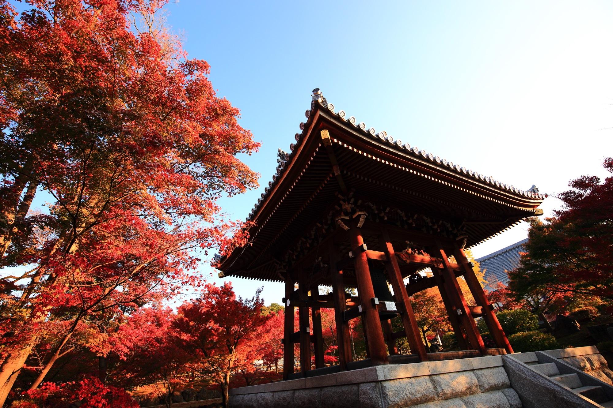 智積院の鐘楼と煌びやかな紅葉