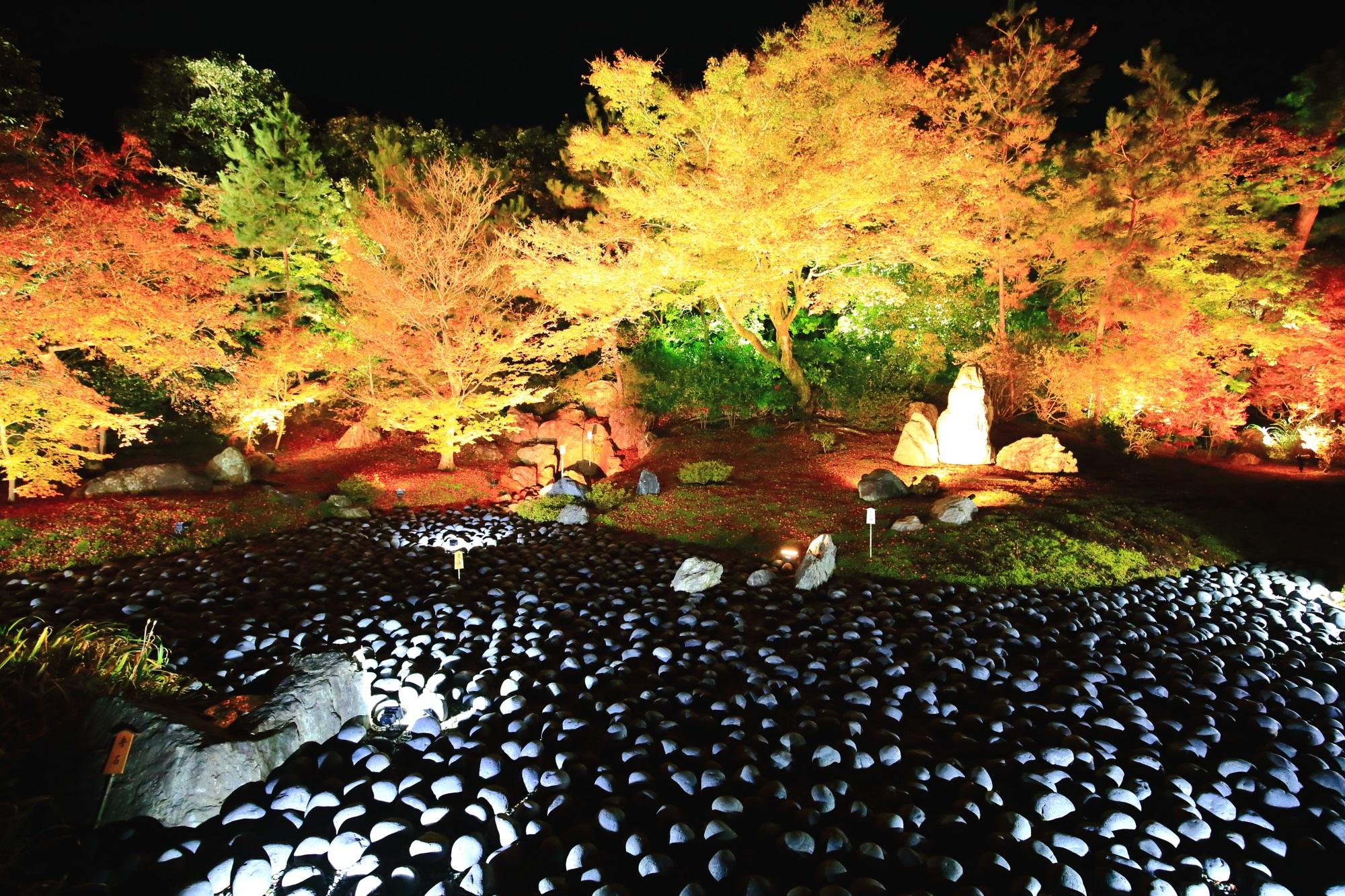 宝厳院 苦海 紅葉 見ごろ ライトアップ 天龍寺 嵐山