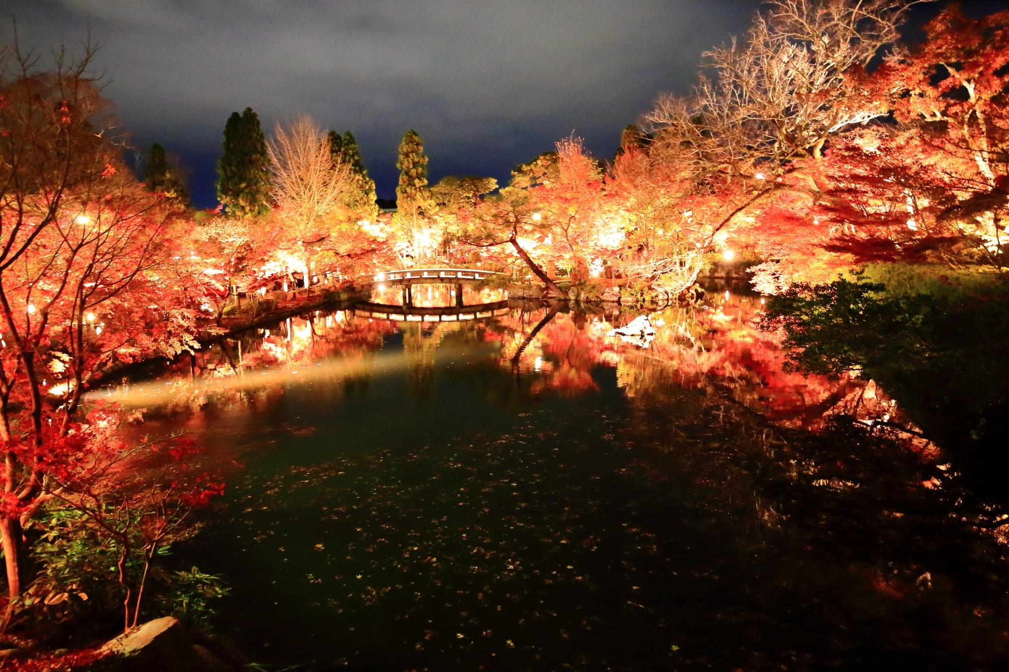 永観堂の放生池の美しい圧巻の紅葉