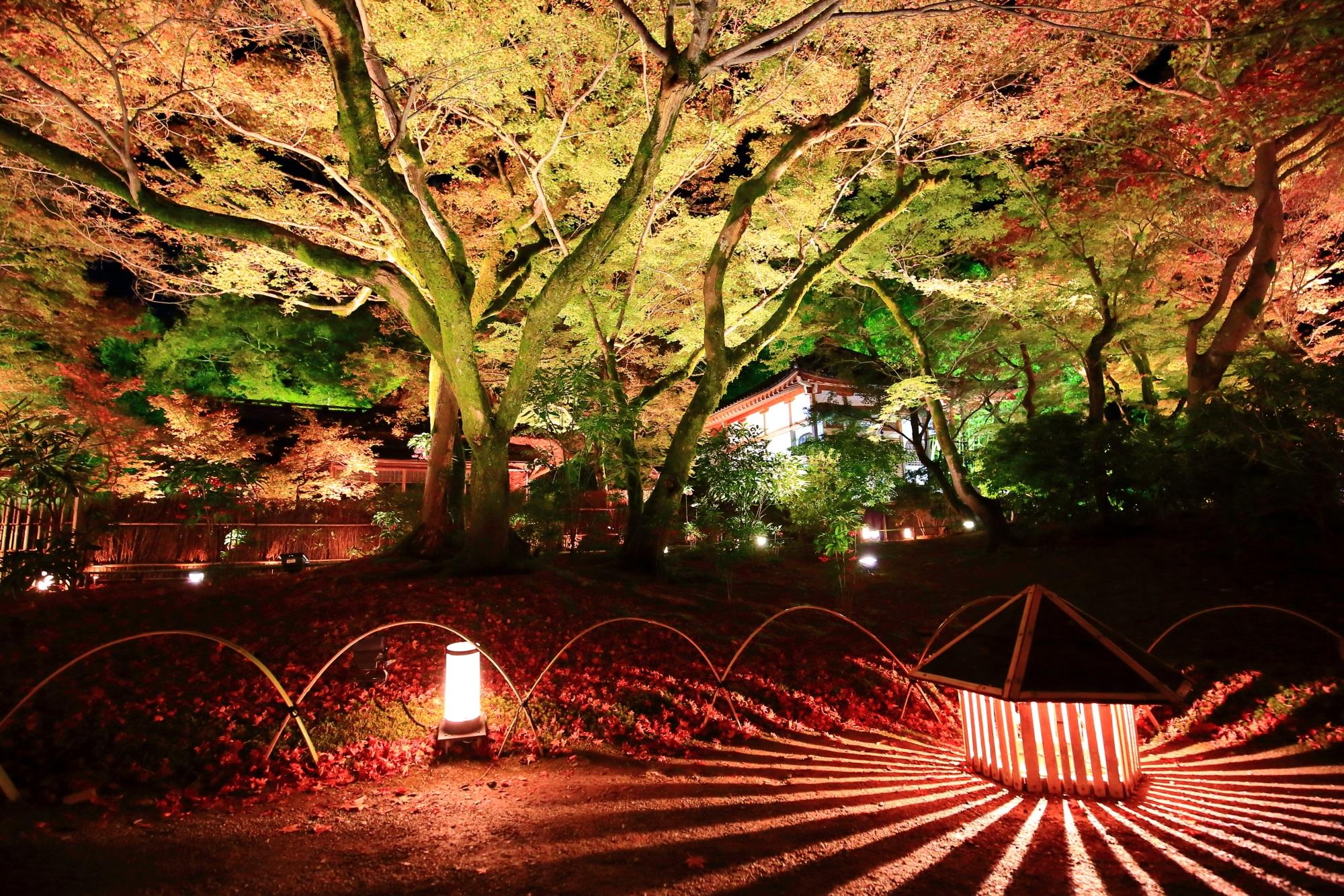 Hogon-in temple Kyoto Arashiyama Tenryu-ji 紅葉 ライトアップ