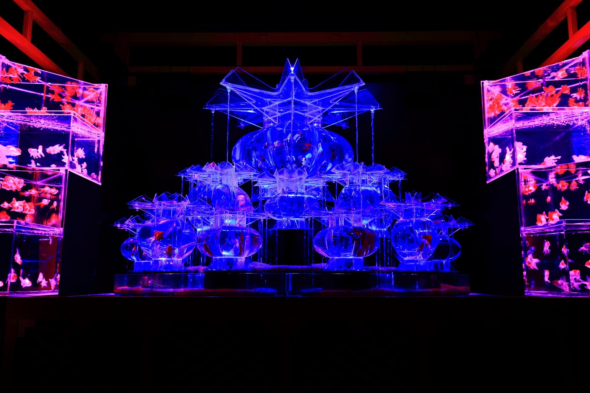幻想的な金魚の舞 アートアクアリウム城 大奥 二条城