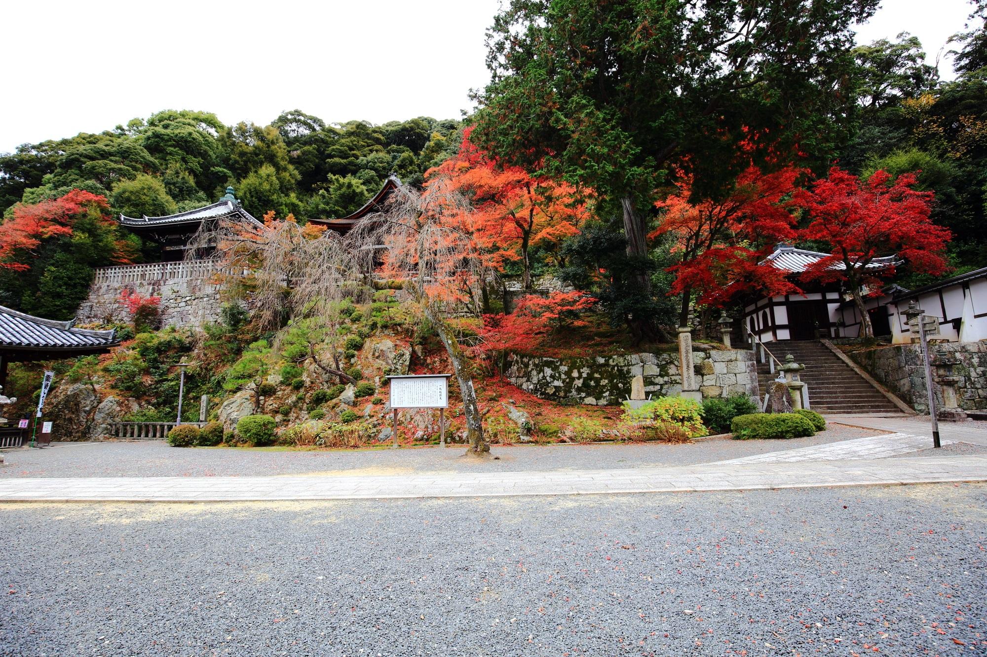 知恩院の御廟の素晴らしい紅葉と情景