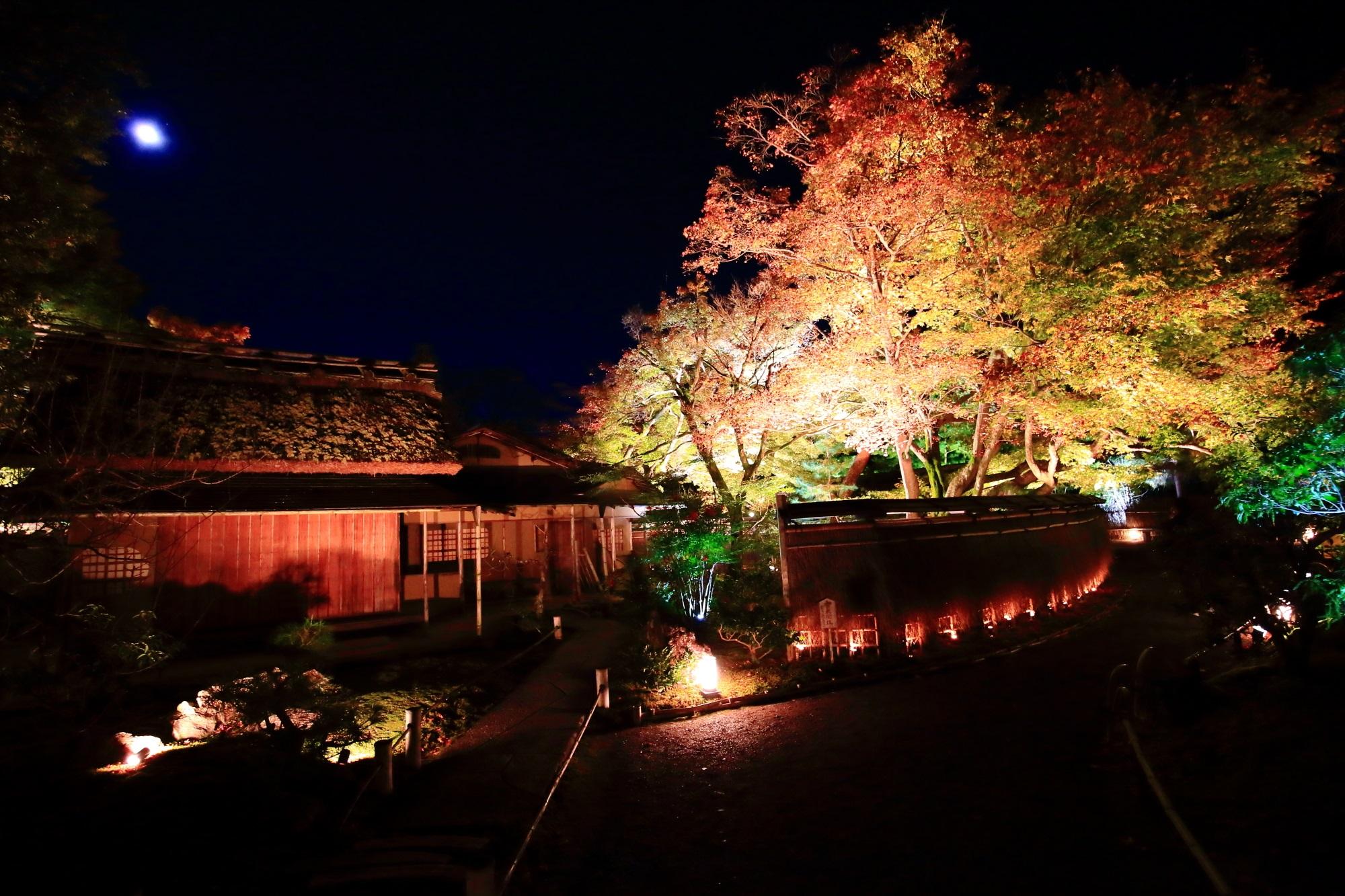 宝厳院の茶席「青嶂軒(せいしょうけん)」と紅葉ライトアップ