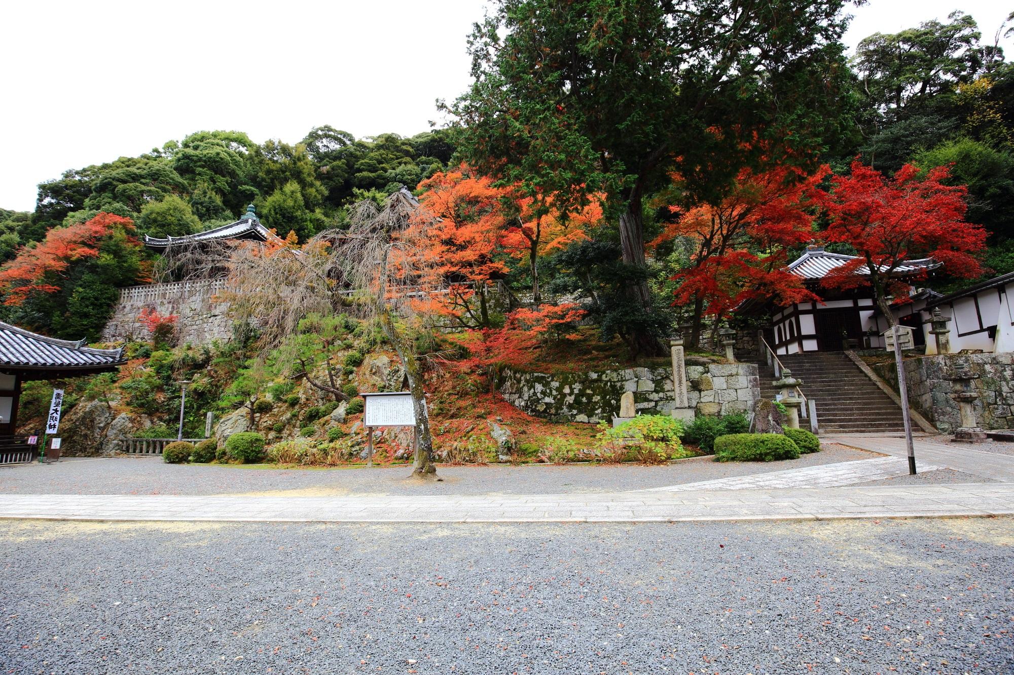 石段の先で待つ隠れた紅葉
