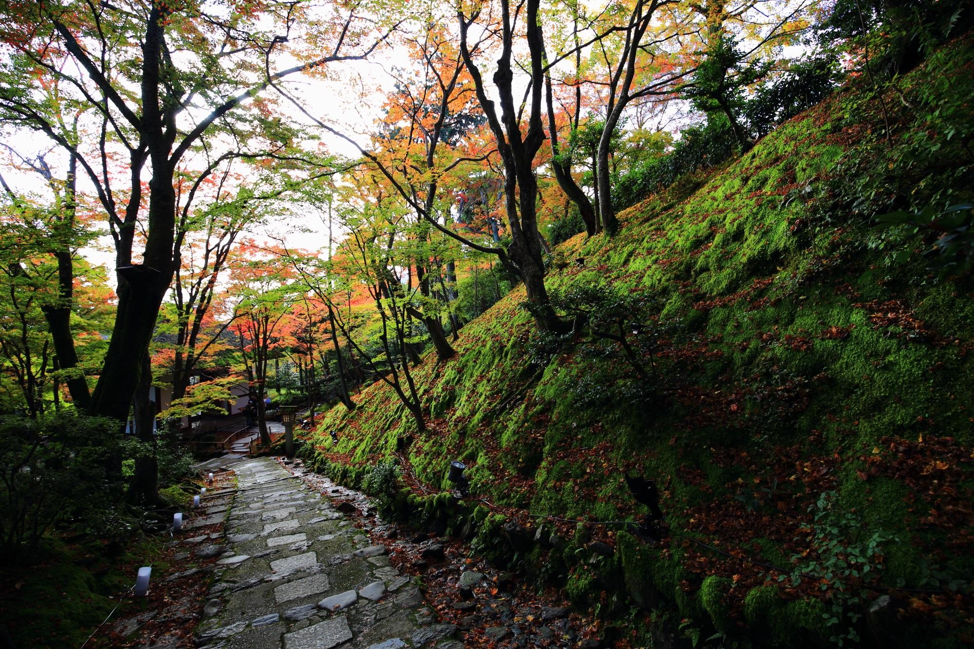 奥嵯峨の常寂光寺の末吉坂の紅葉と苔