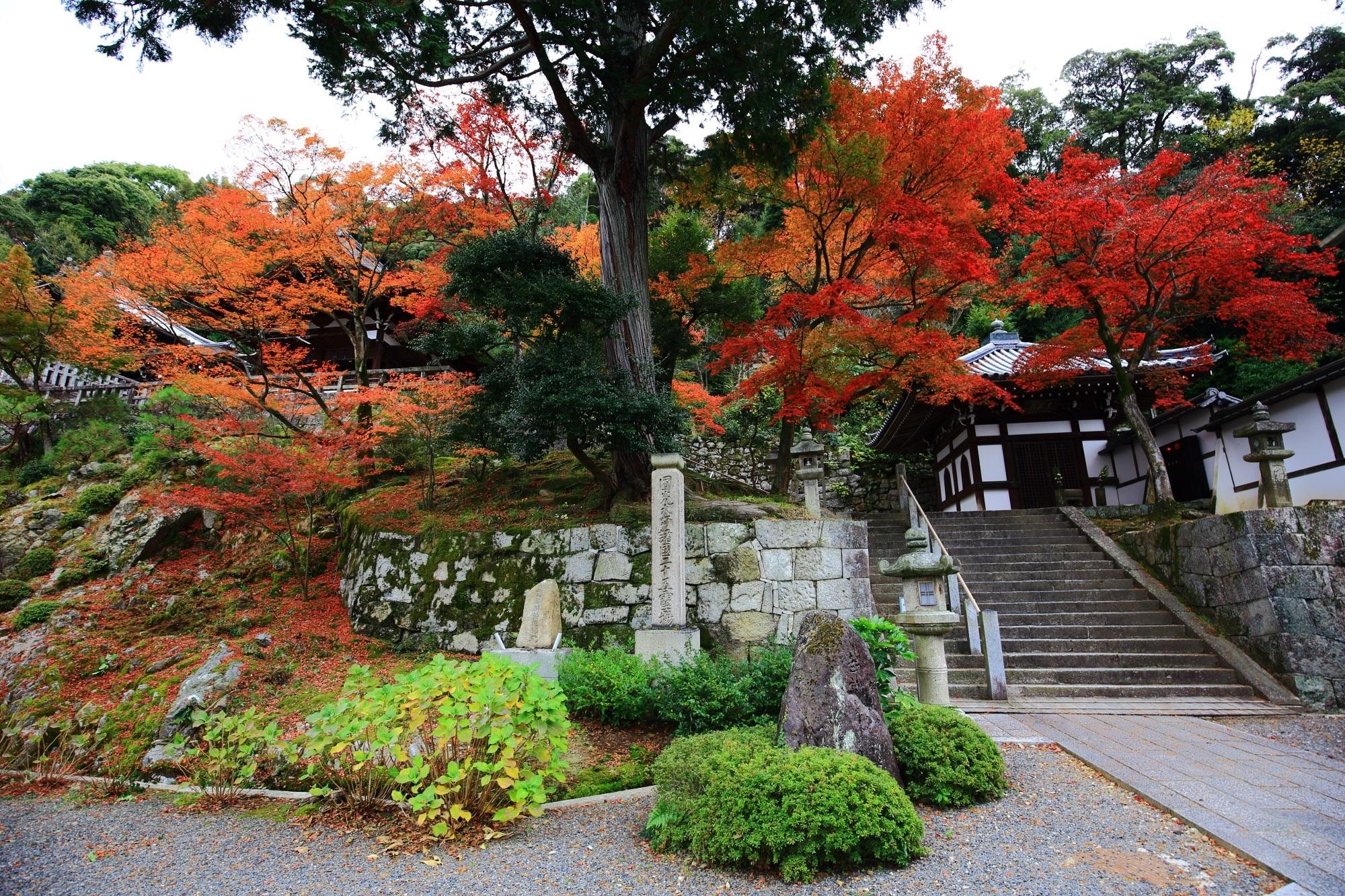 厳かな御廟をつつむ多彩な紅葉
