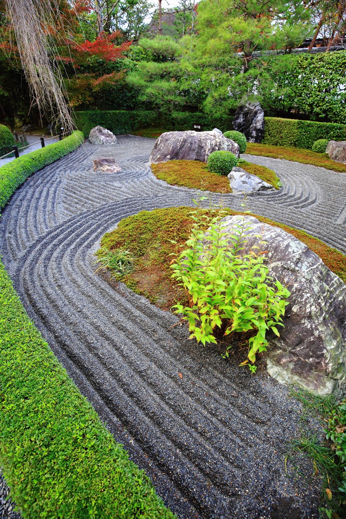 秋や緑の時期も美しい妙心寺退蔵院の陰陽の庭