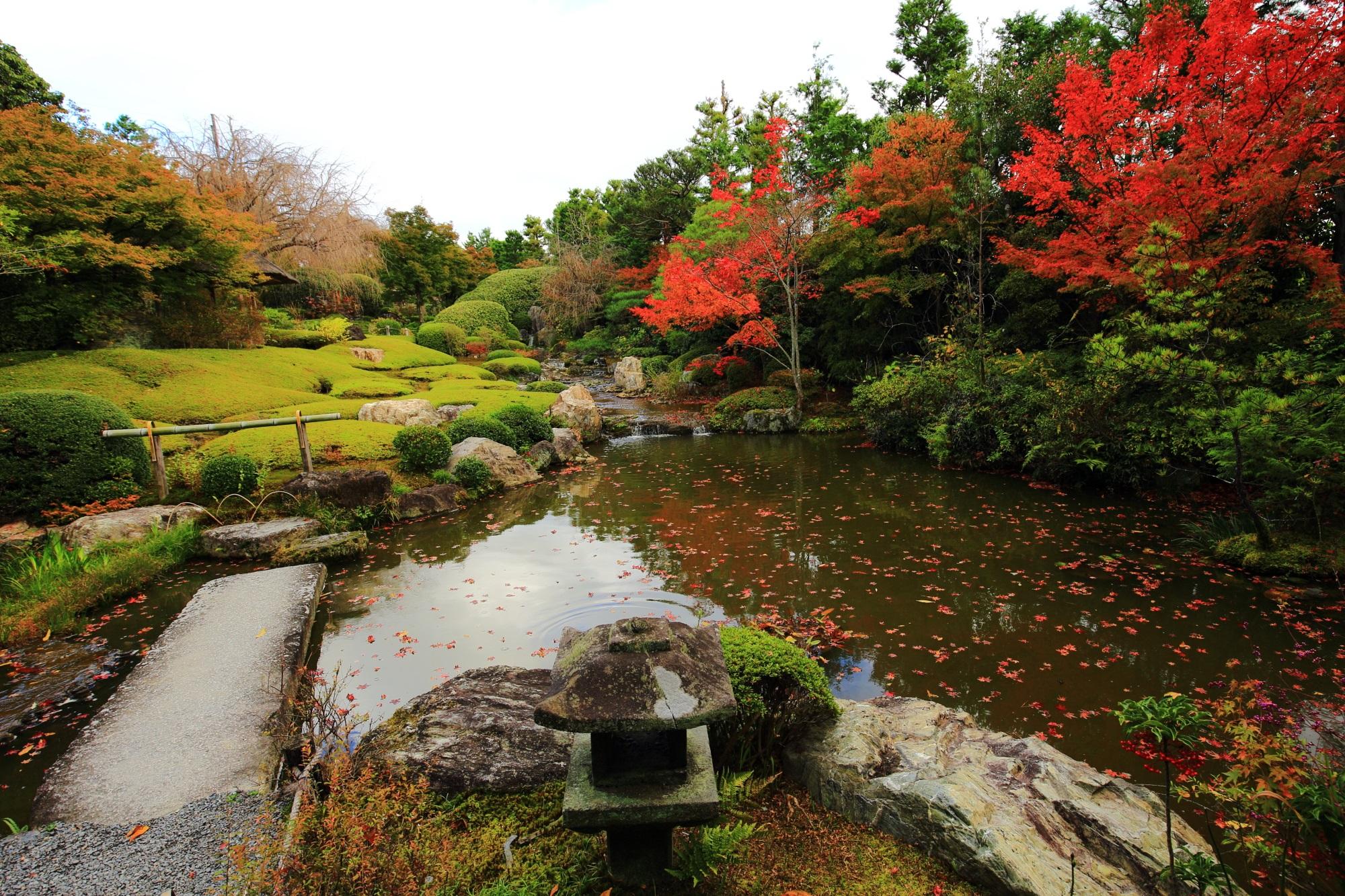 余香苑の水辺を彩る多彩な紅葉