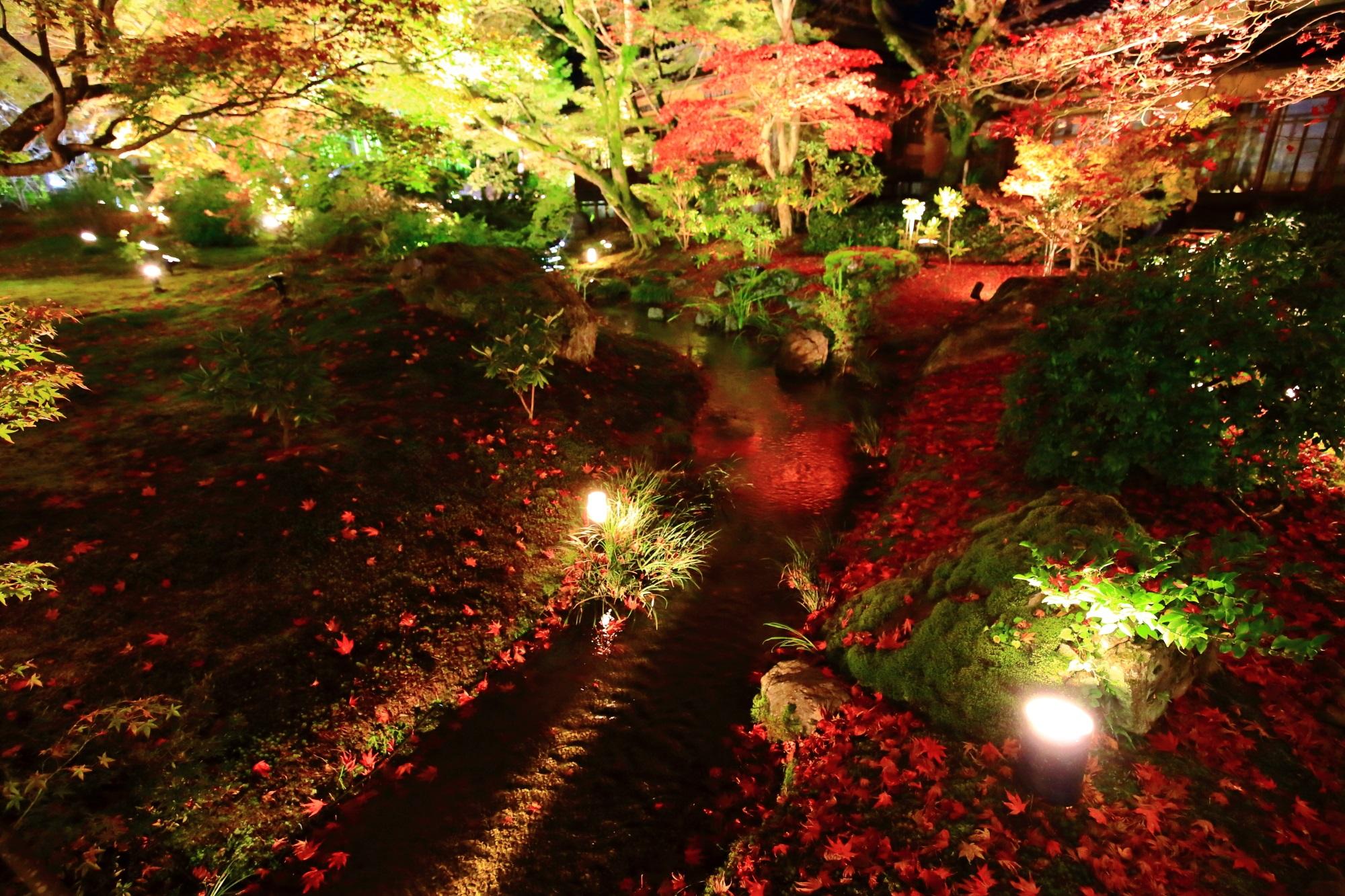 宝厳院の獅子吼の庭の書院前の小川の美しい散りもみじ