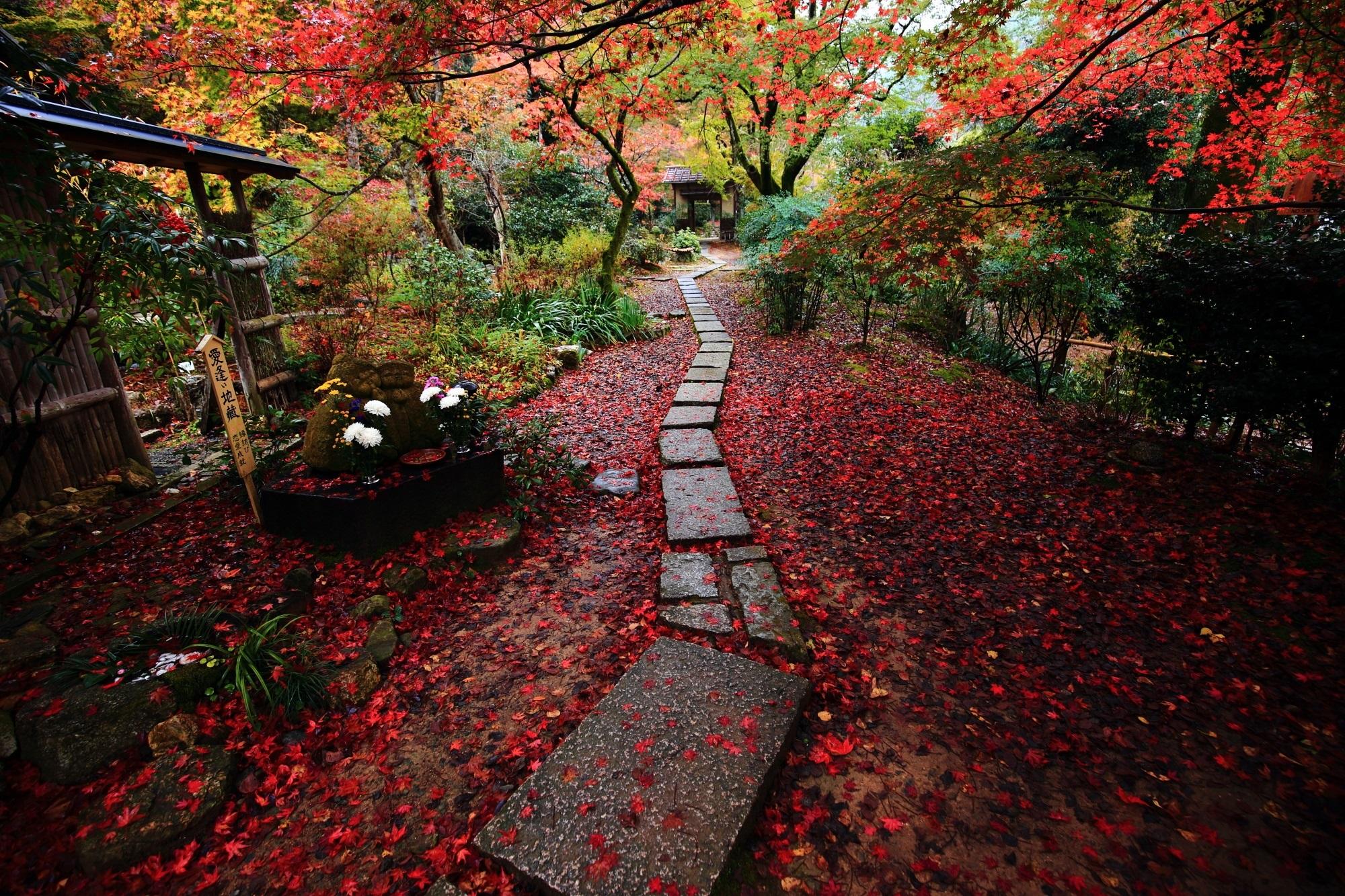 直指庵(じきしあん) 紅葉 雨の美しい散りもみじ
