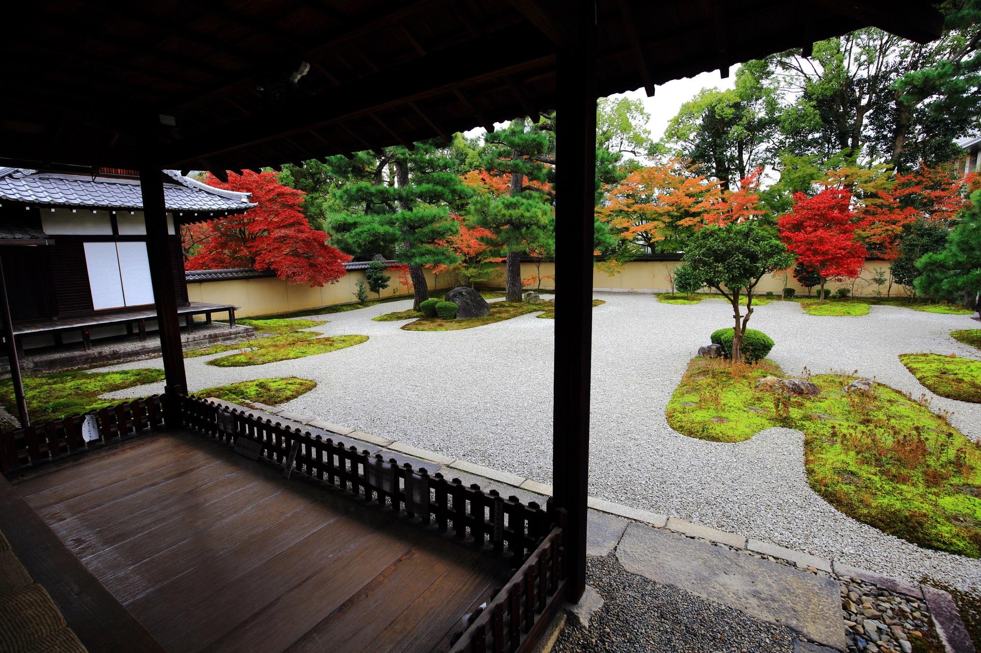 廬山寺 紅葉 もみじの穴場の鮮やかな彩り