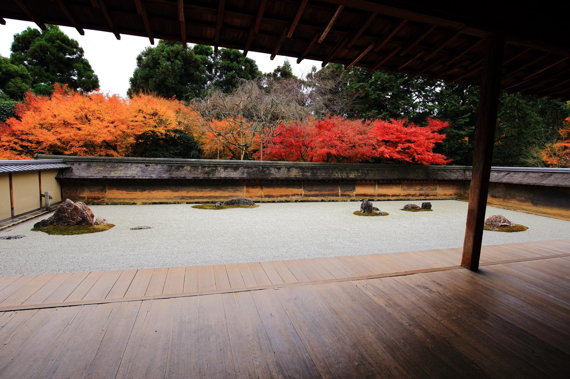 龍安寺の石庭の赤や黄色やオレンジの紅葉