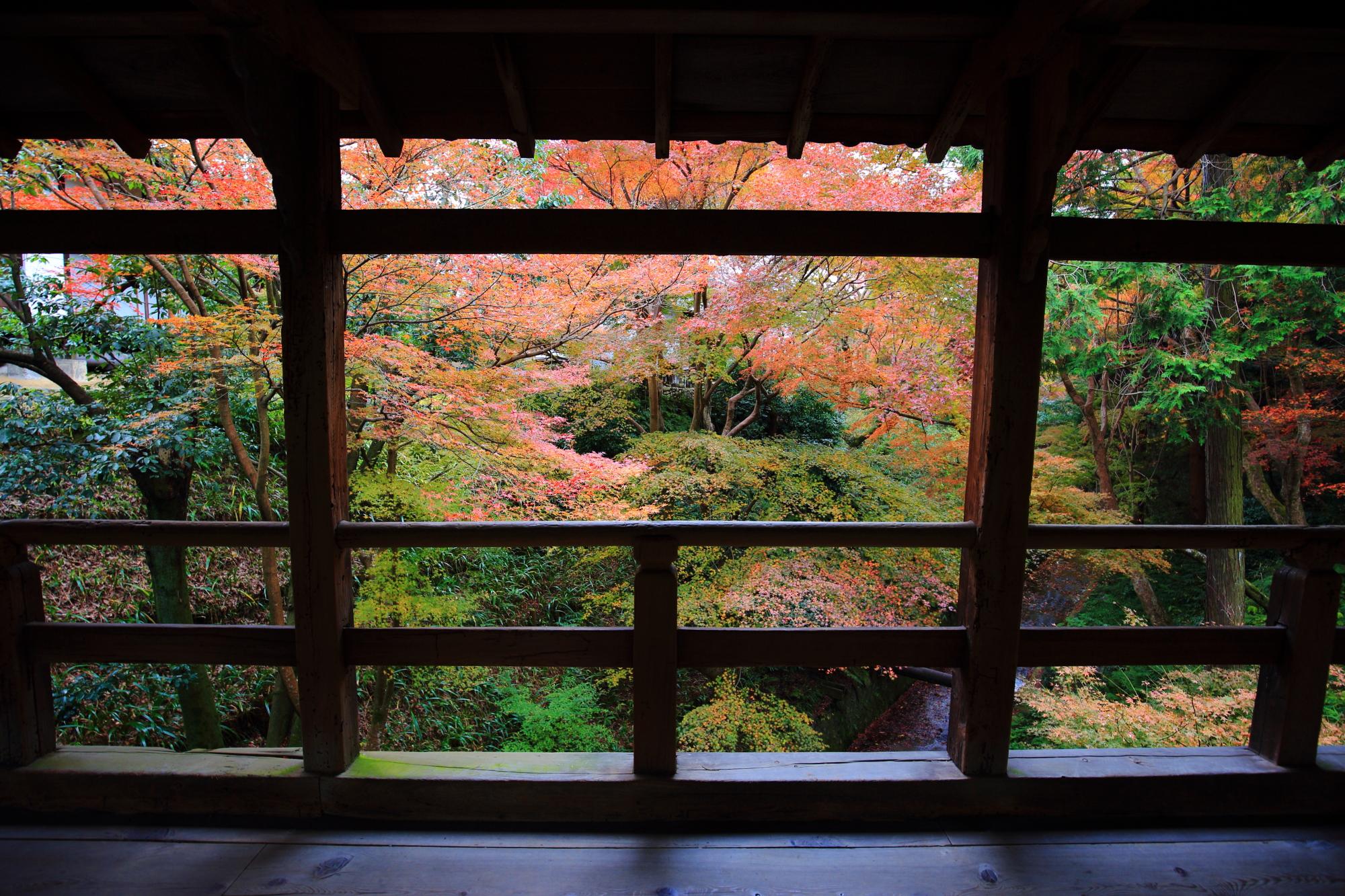 龍吟庵前にかかる偃月橋(えんげつきょう)の紅葉