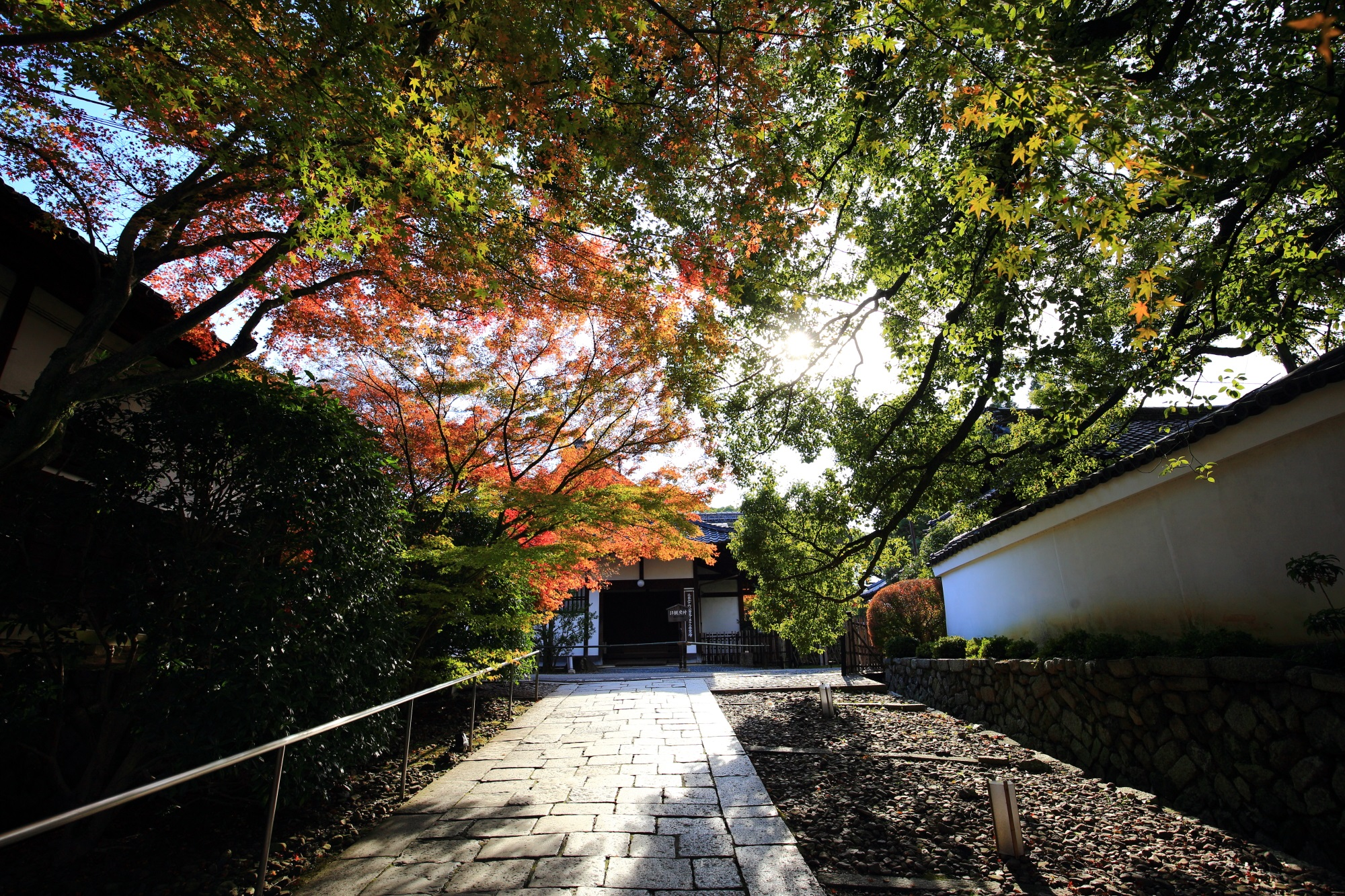 青蓮院の山門付近の紅葉