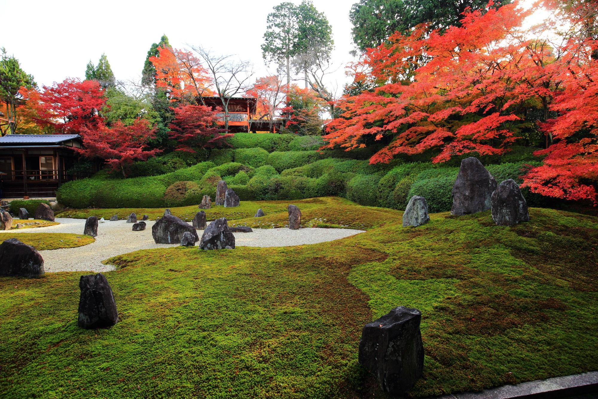 光明院の波心庭(波心の庭)の紅葉