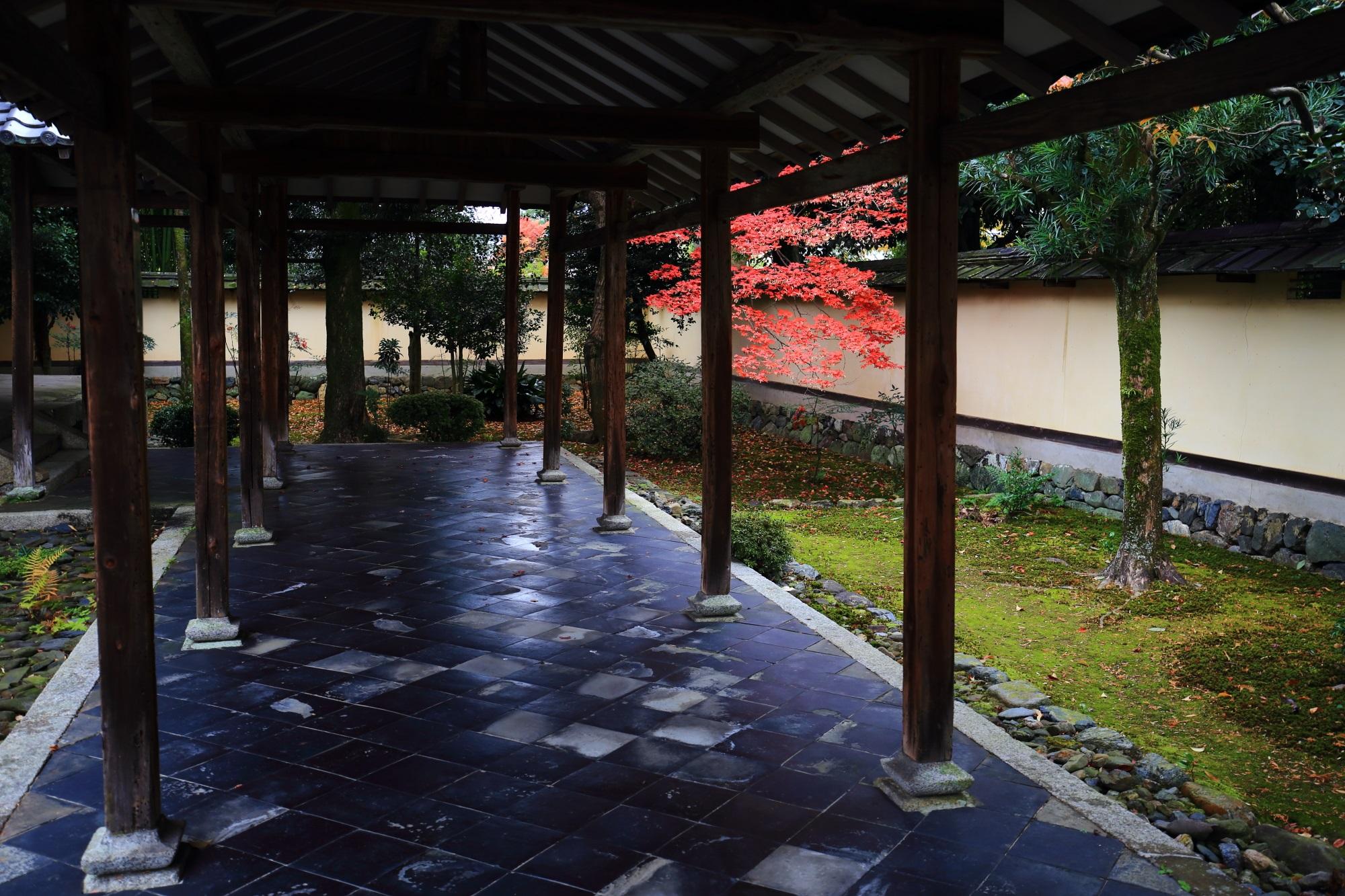 嵐山の鹿王院の舎利殿付近の見ごろの紅葉