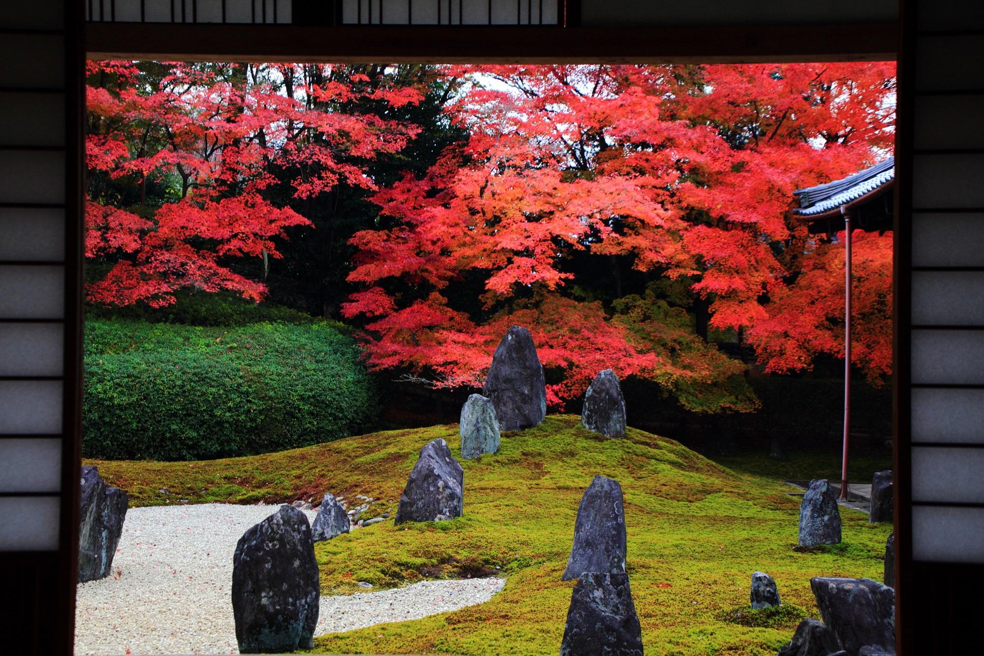 庭園をつつむ迫力の紅葉