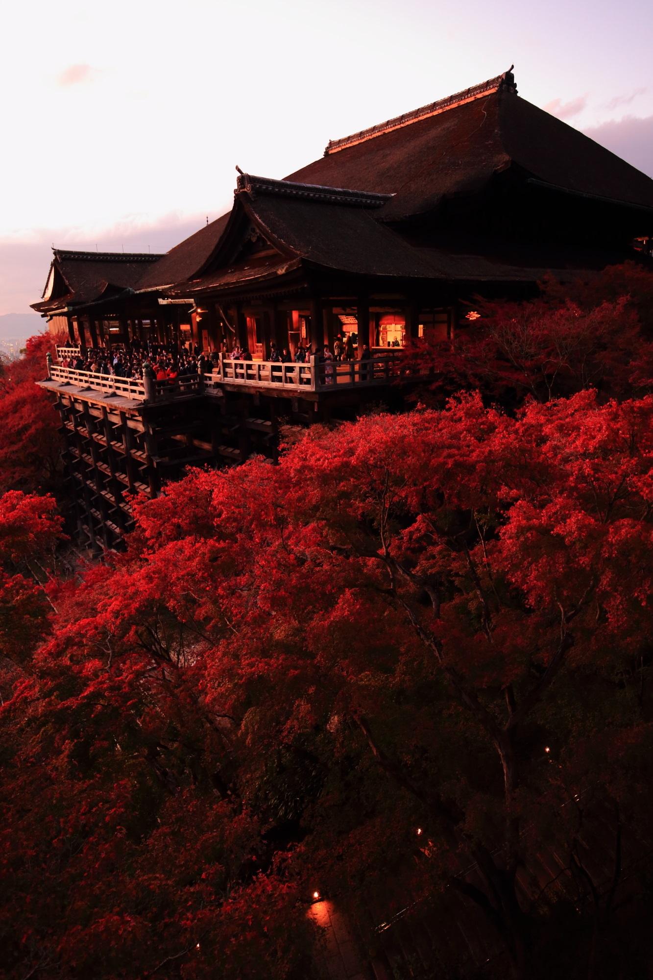 夕焼けと紅葉で赤く染まった清水寺の清水の舞台